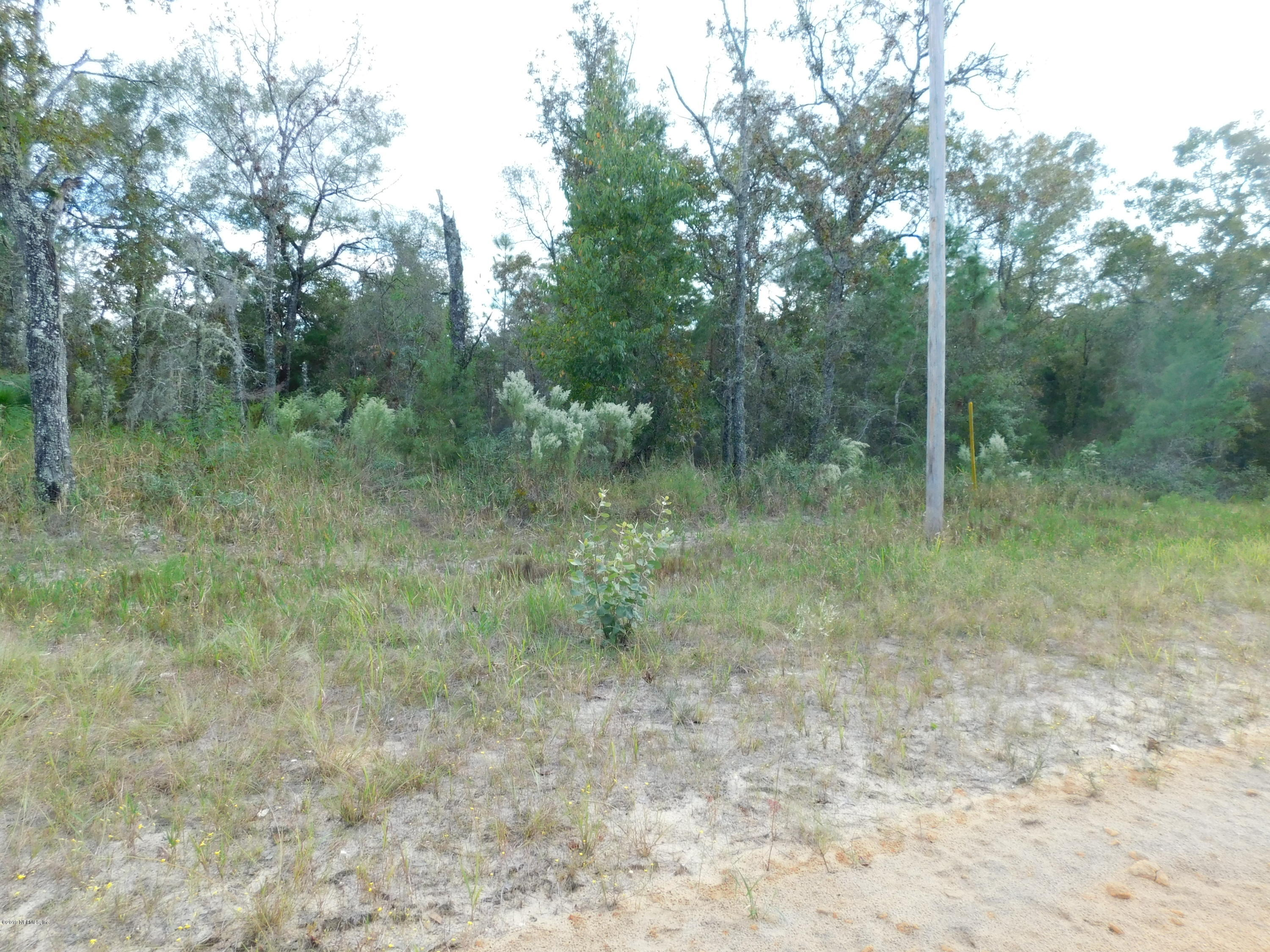#75 POINCIANA, INTERLACHEN, FLORIDA 32148, ,Vacant land,For sale,POINCIANA,1020928