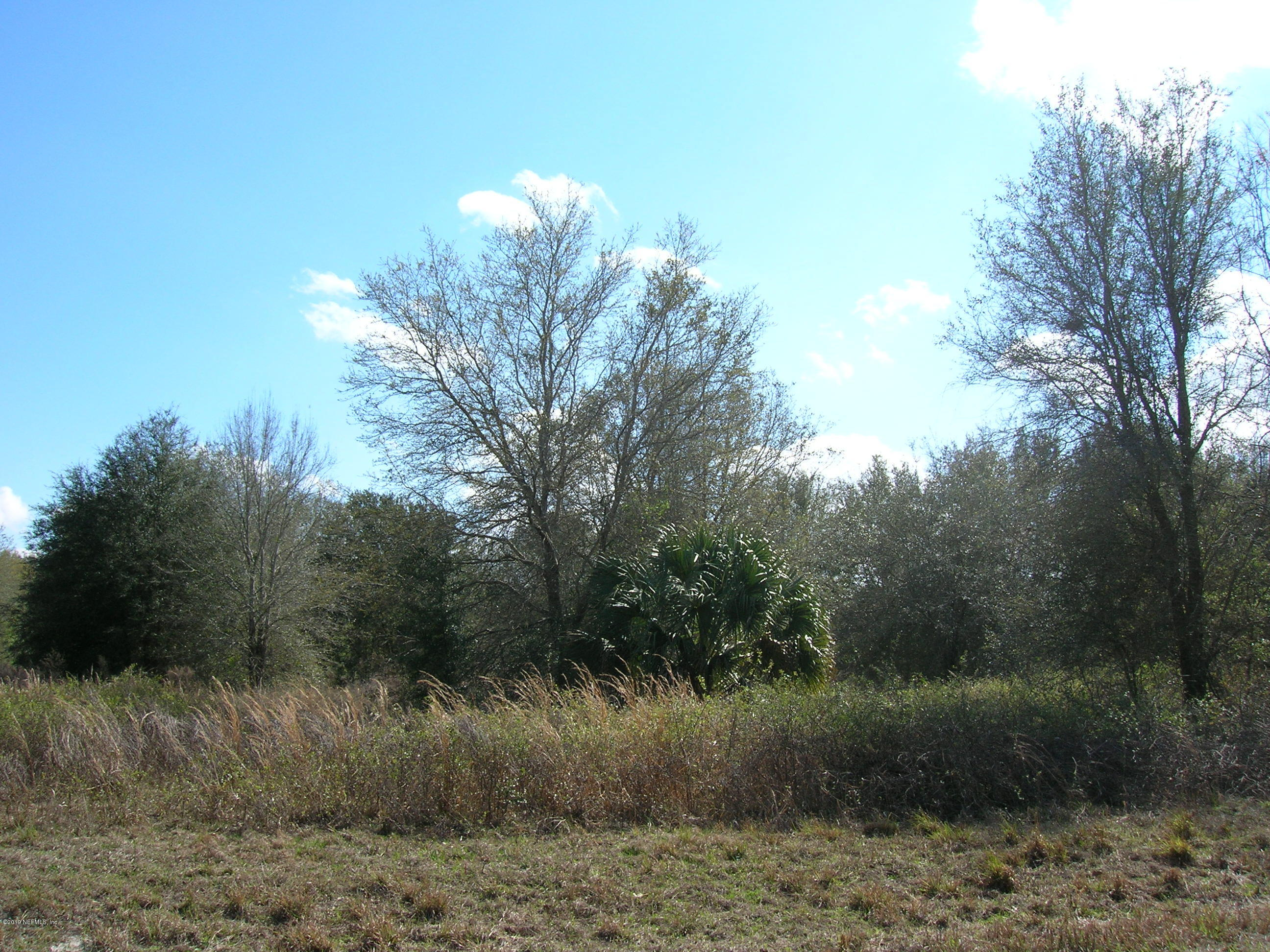 0 28TH LOT #12, CHIEFLAND, FLORIDA 32626, ,Vacant land,For sale,28TH LOT #12,1022878