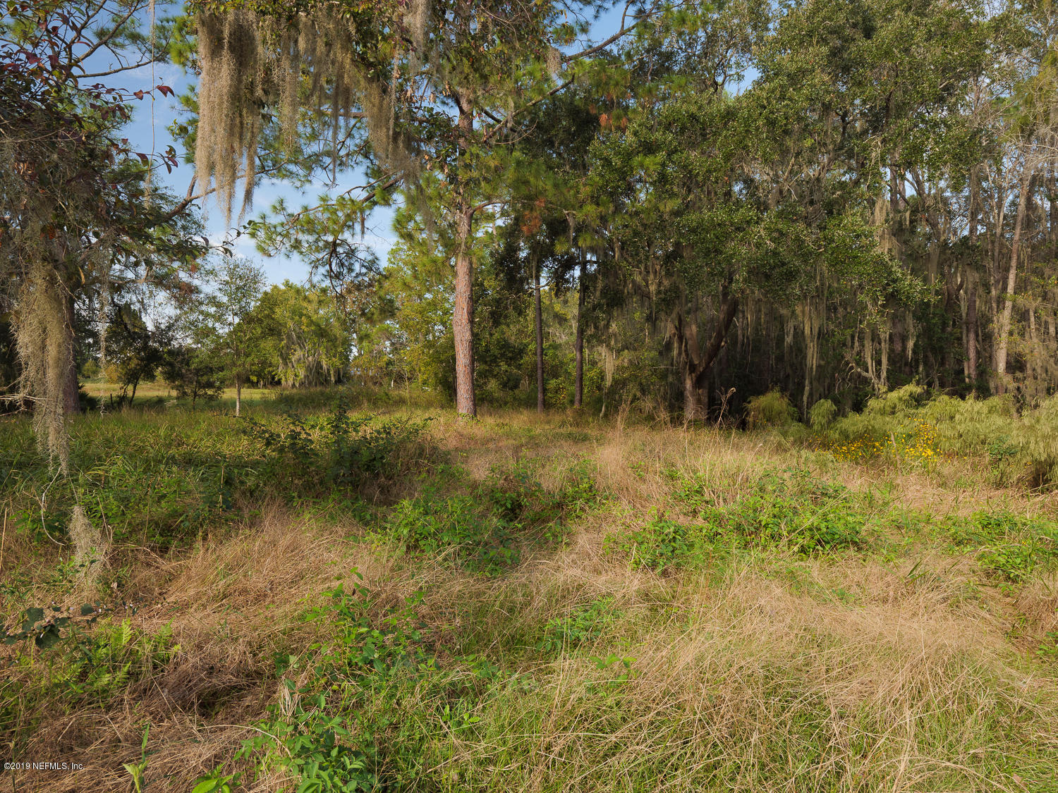 0 135TH, WALDO, FLORIDA 32694, ,Vacant land,For sale,135TH,1023442