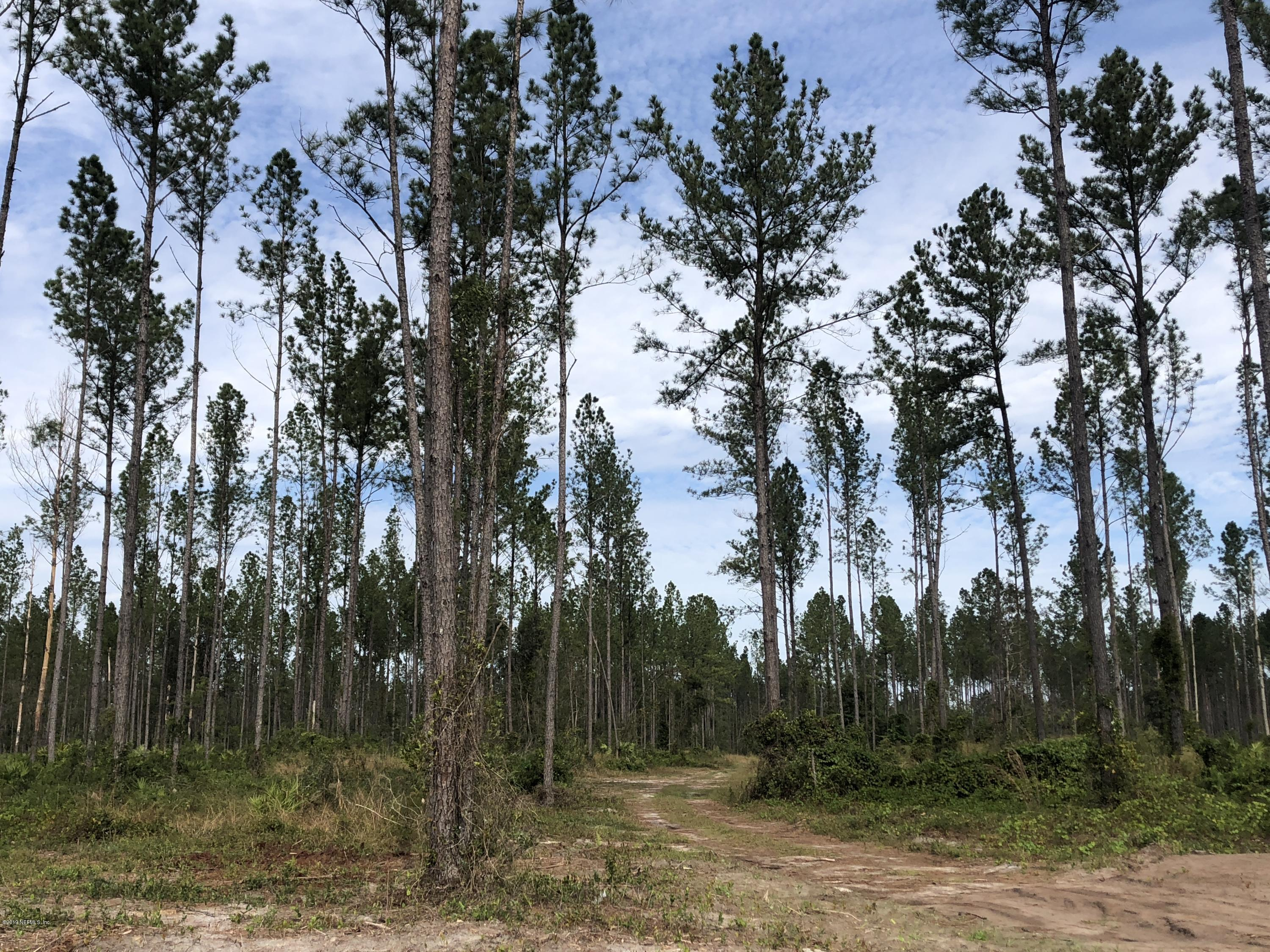 151668 CO RD 108, HILLIARD, FLORIDA 32046, ,Vacant land,For sale,CO RD 108,1024573