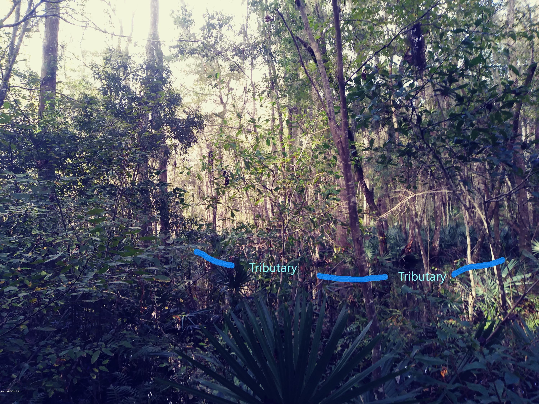 2336 MOREMEN, ST JOHNS, FLORIDA 32259, ,Vacant land,For sale,MOREMEN,1024663