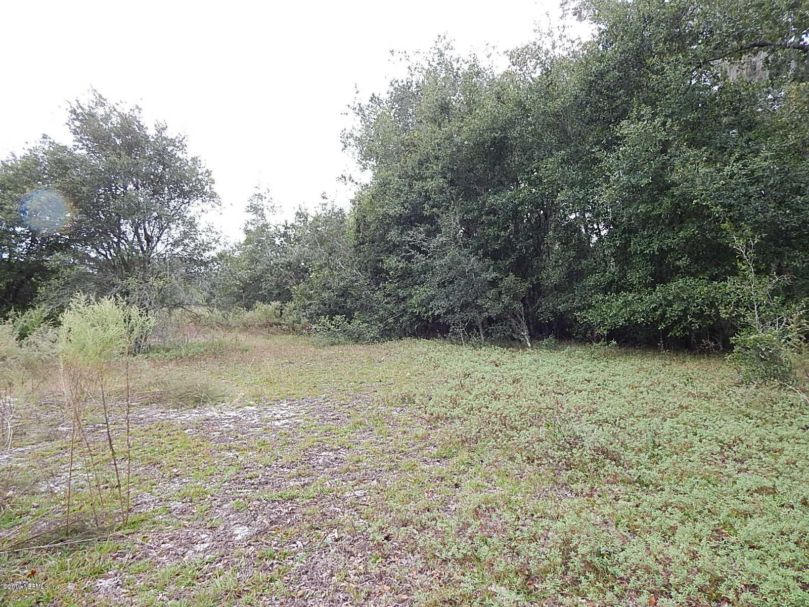 101 MILL, POMONA PARK, FLORIDA 32181, ,Vacant land,For sale,MILL,1025636