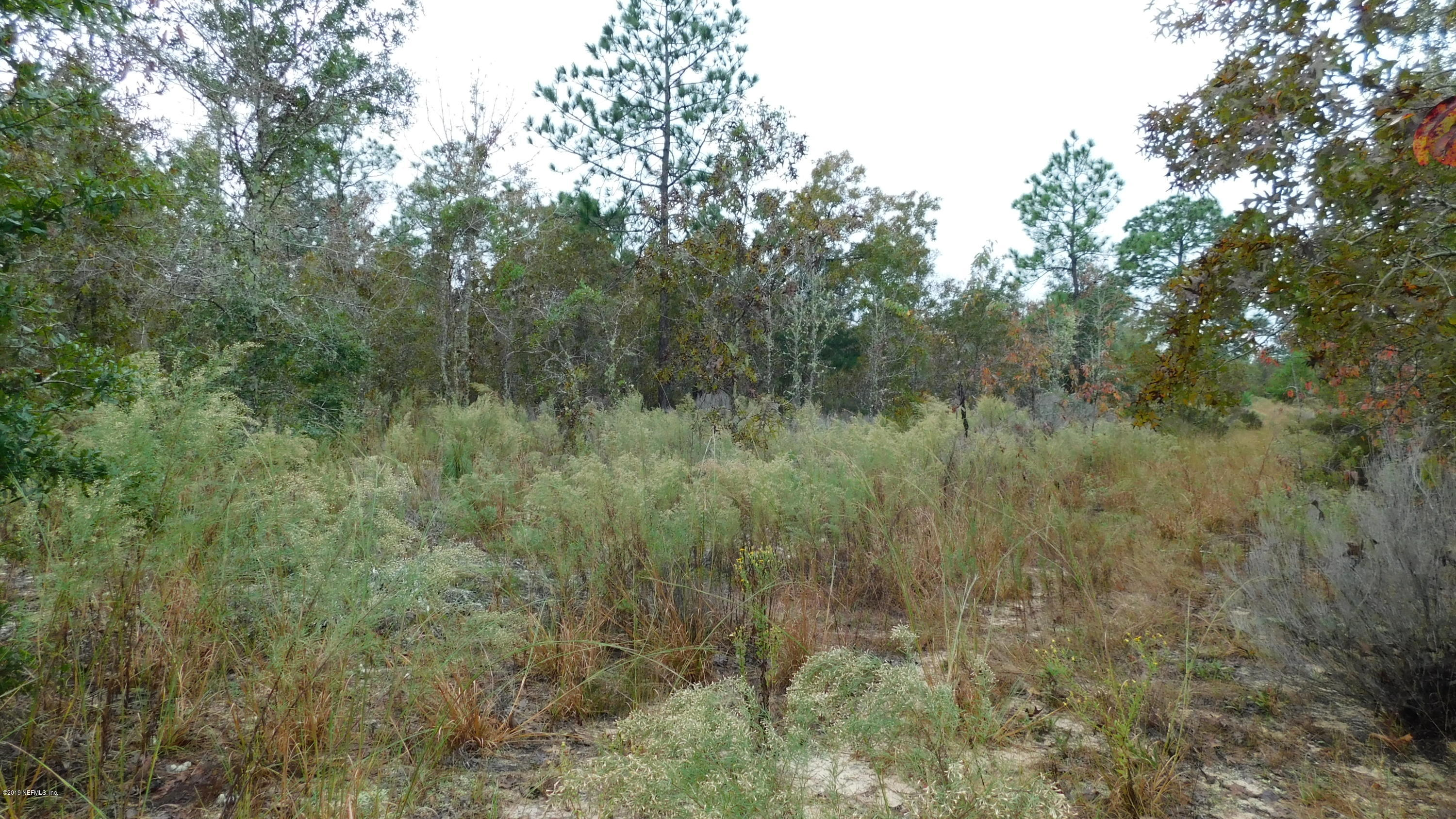 0 LINDA, INTERLACHEN, FLORIDA 32148, ,Vacant land,For sale,LINDA,1024681