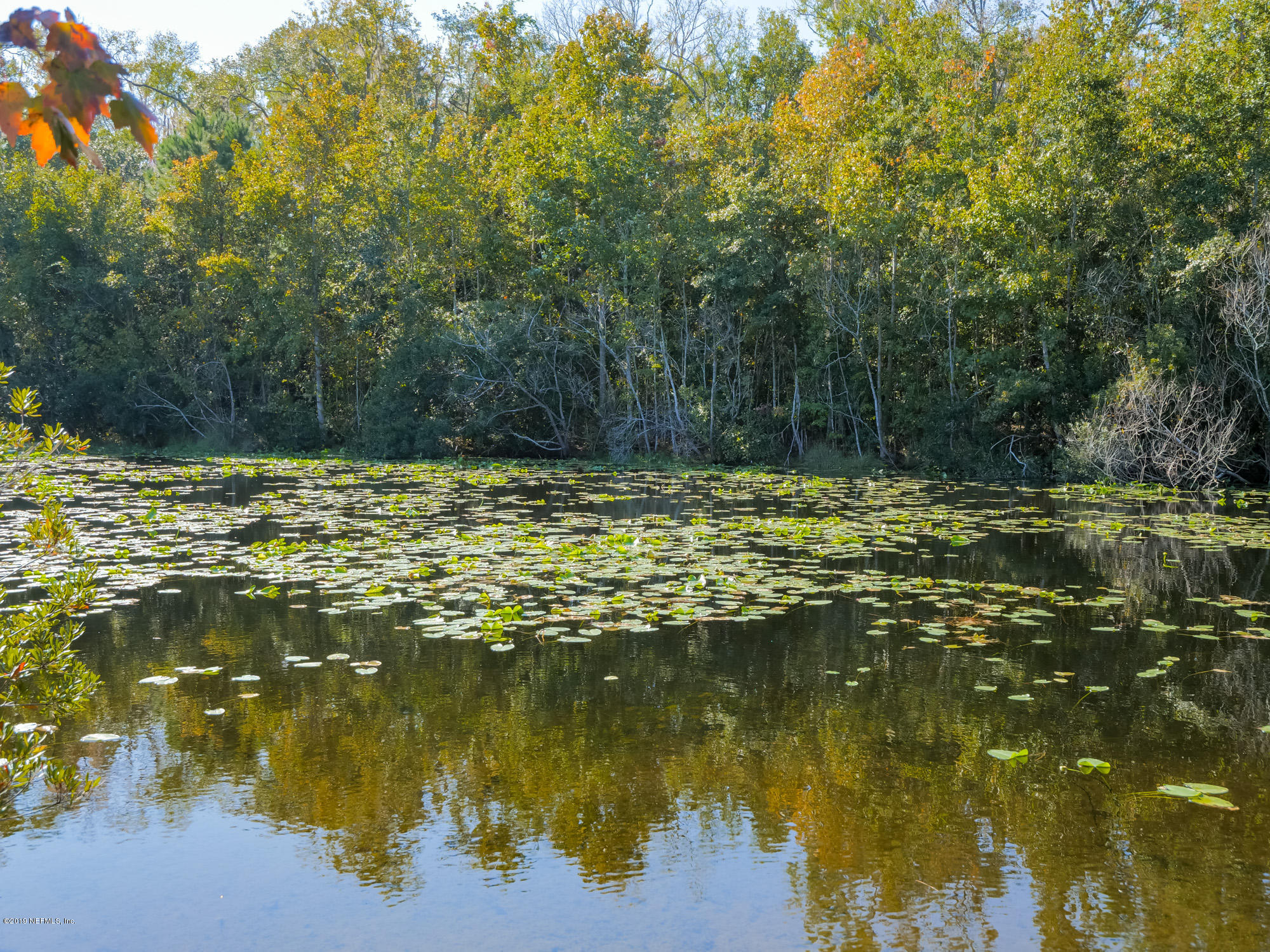LOT 7 CAPE VIEW, JACKSONVILLE, FLORIDA 32226, ,Vacant land,For sale,CAPE VIEW,1026647