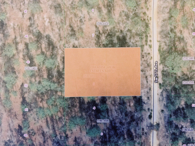 00 57TH, INTERLACHEN, FLORIDA 32148, ,Vacant land,For sale,57TH,1027583