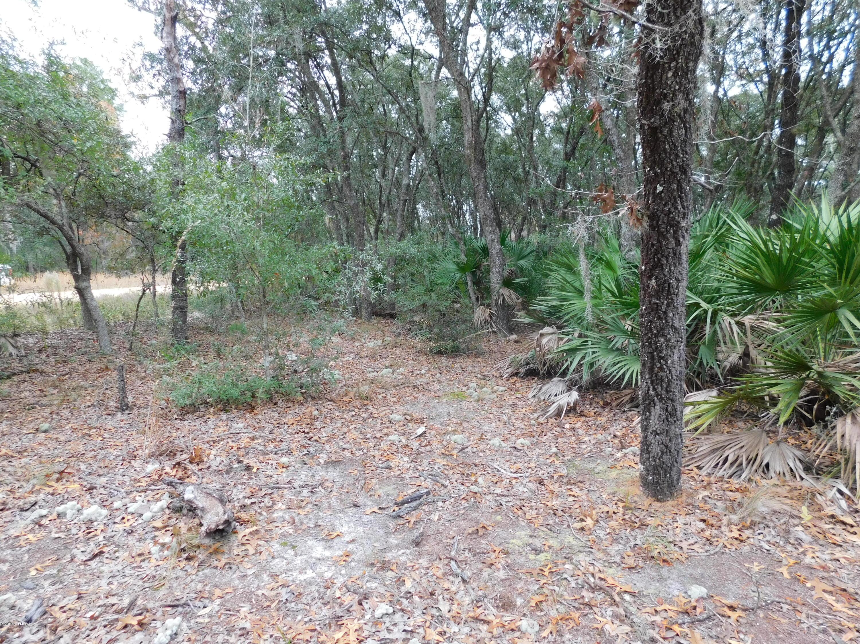 0 CHURCHILL, INTERLACHEN, FLORIDA 32148, ,Vacant land,For sale,CHURCHILL,1029000
