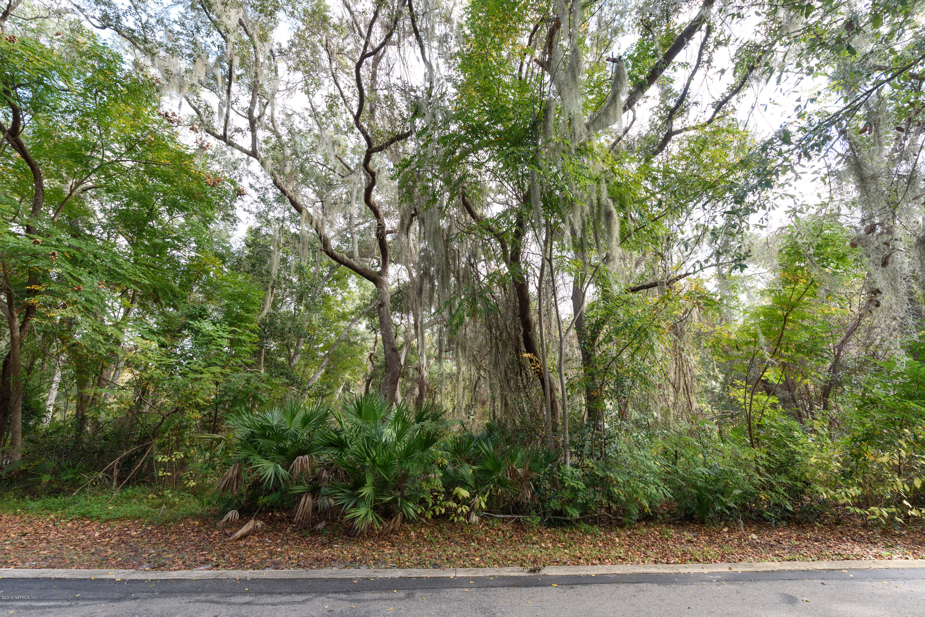 701 CAMELIA, ST AUGUSTINE, FLORIDA 32086, ,Vacant land,For sale,CAMELIA,1030246