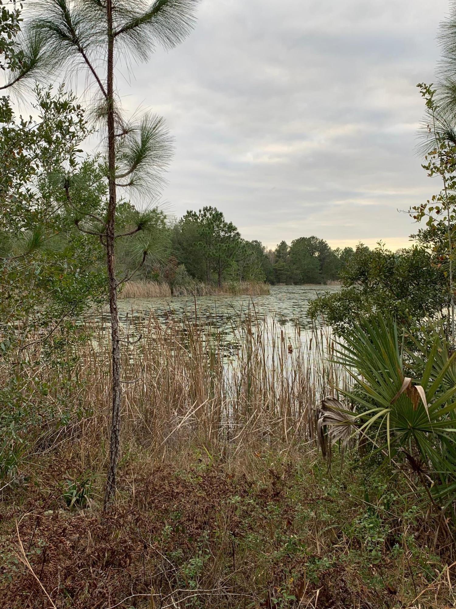 103 LONG BRANCH, INTERLACHEN, FLORIDA 32148, ,Vacant land,For sale,LONG BRANCH,1030659