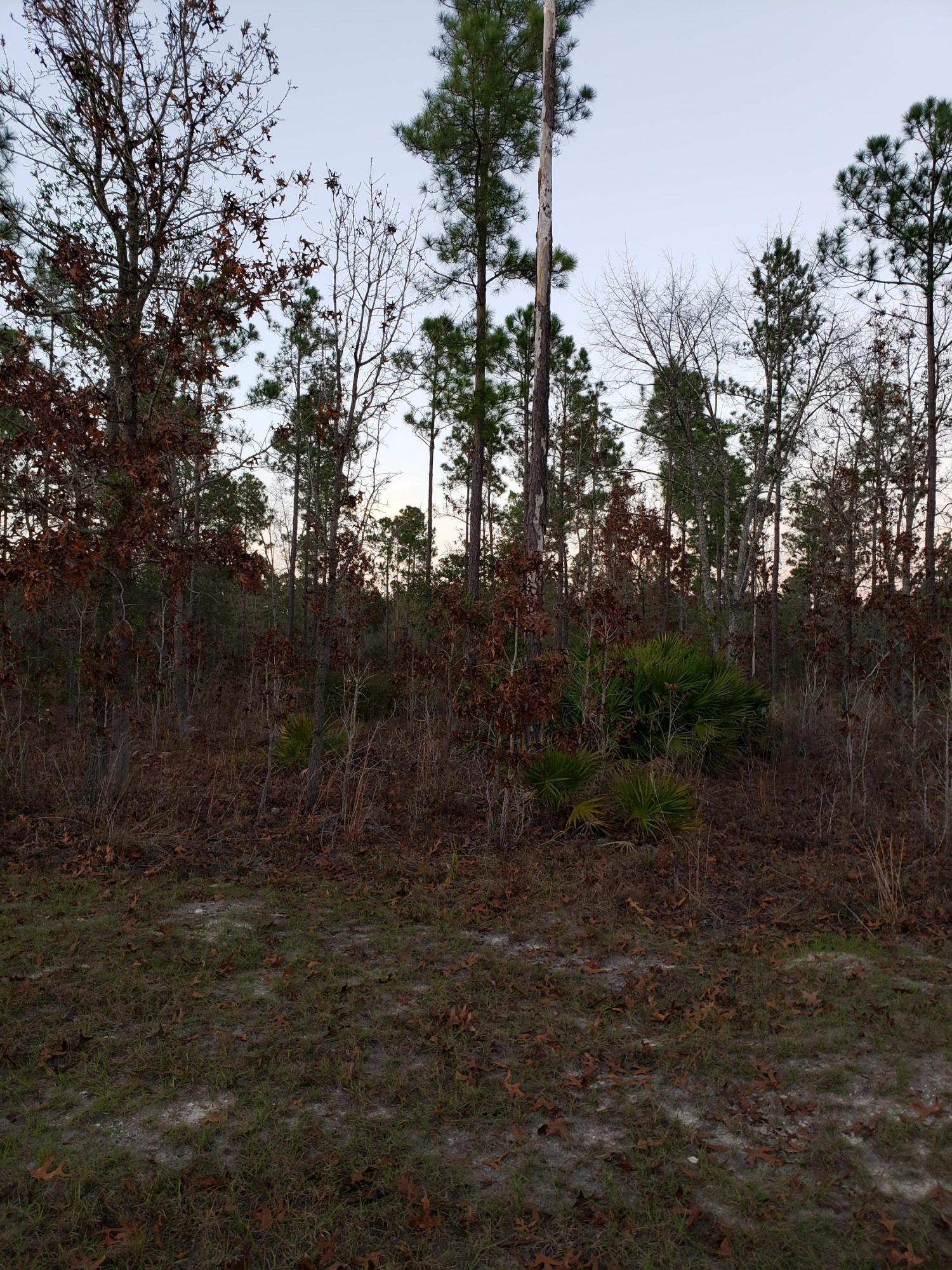 0 DEEP CREEK, BRYCEVILLE, FLORIDA 32009, ,Vacant land,For sale,DEEP CREEK,1031169