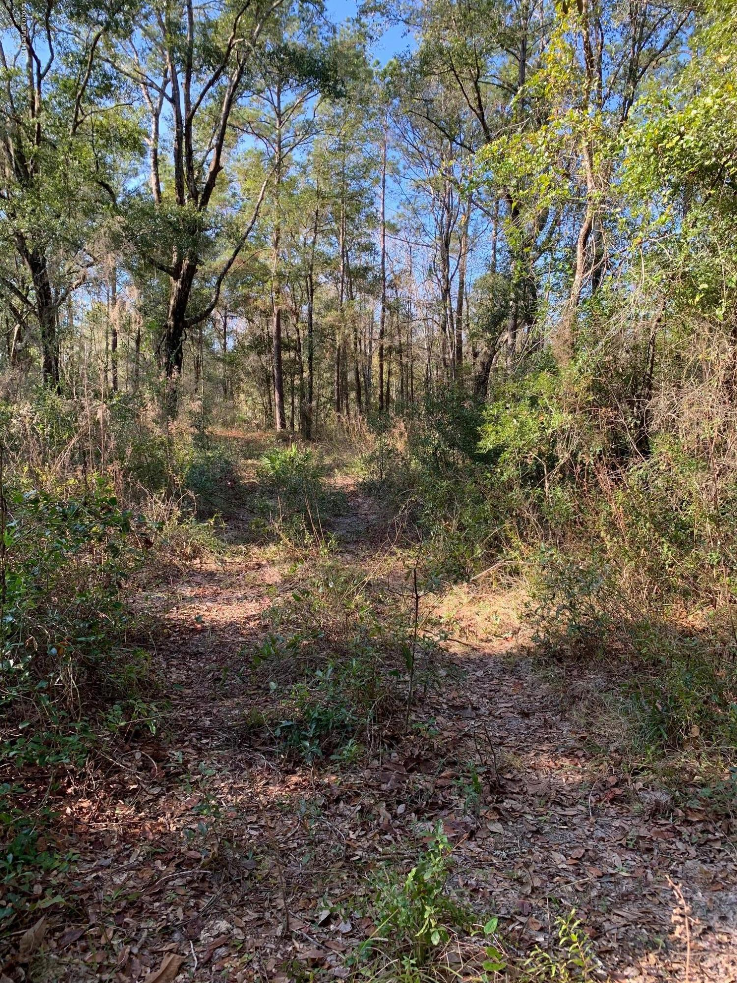 2222 TREASURE POINT, GREEN COVE SPRINGS, FLORIDA 32043, ,Vacant land,For sale,TREASURE POINT,1033987