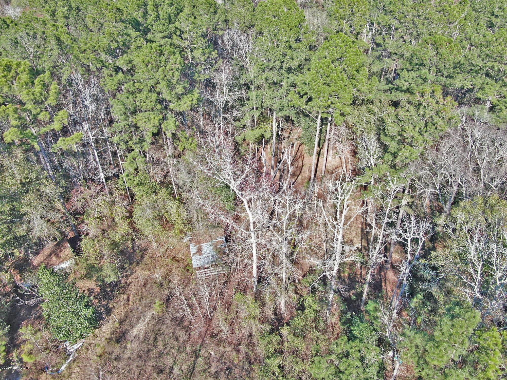 TBD HAMP HICKS, BRYCEVILLE, FLORIDA 32009, ,Vacant land,For sale,HAMP HICKS,1035109