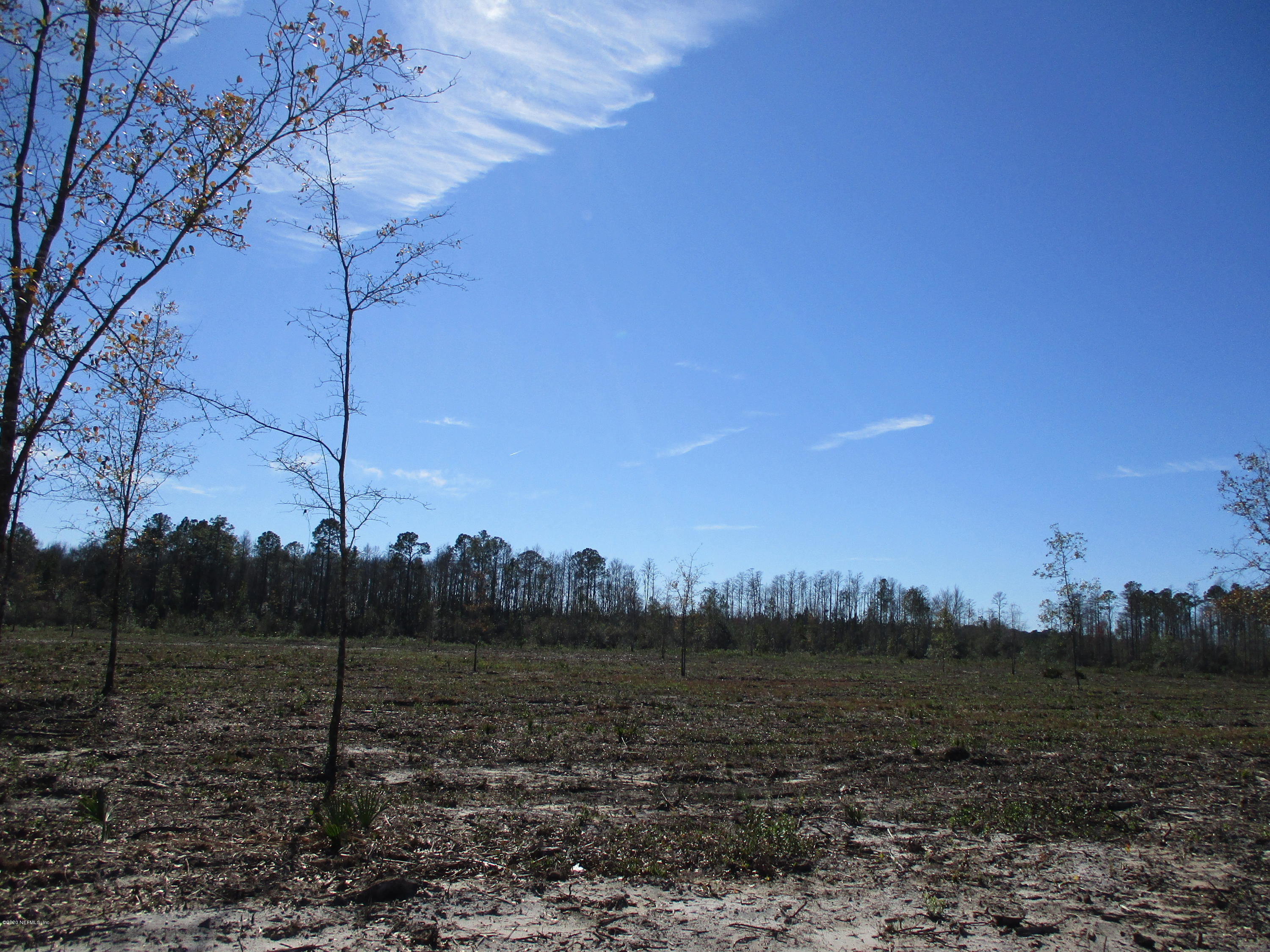 TRACT B OLD DIXIE, HILLIARD, FLORIDA 32046, ,Vacant land,For sale,OLD DIXIE,1037982