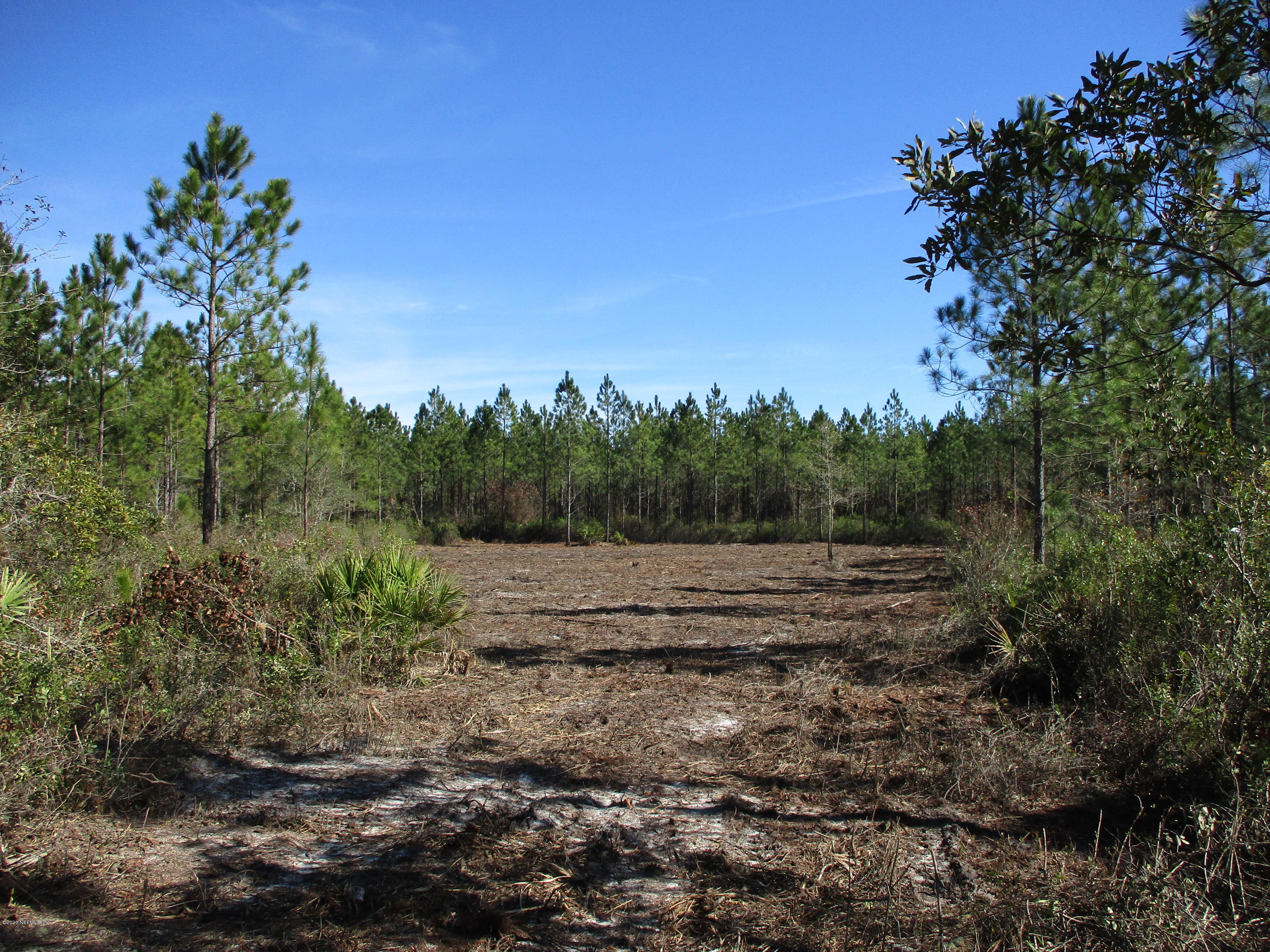 LOT 10 OLD DIXIE, HILLIARD, FLORIDA 32046, ,Vacant land,For sale,OLD DIXIE,1037968