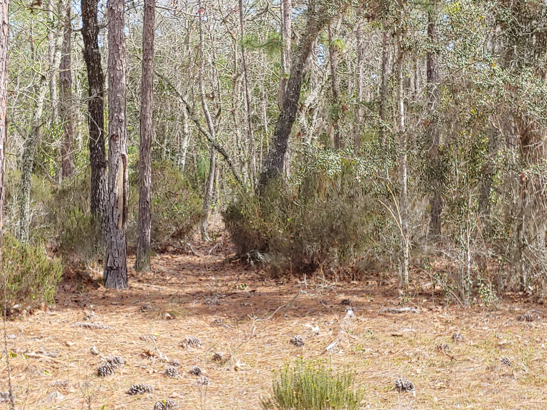 0 MARTINDALE, INTERLACHEN, FLORIDA 32148, ,Vacant land,For sale,MARTINDALE,1038489