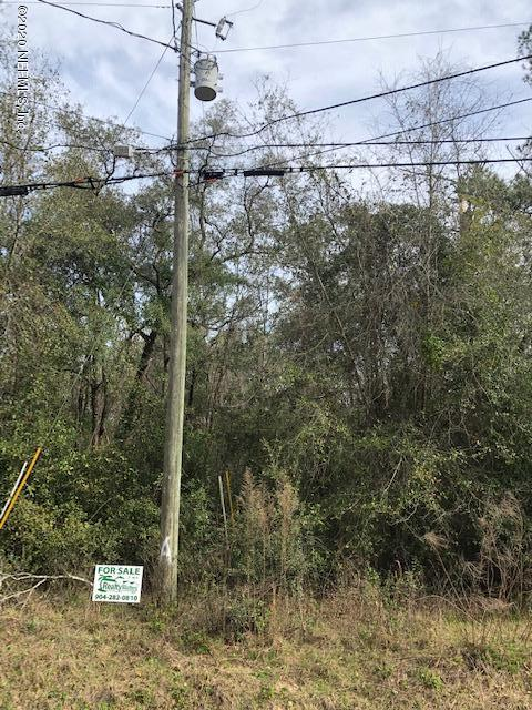 4841 SEDGE, MIDDLEBURG, FLORIDA 32068, ,Vacant land,For sale,SEDGE,1039640
