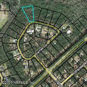 2817 CAMEL, MIDDLEBURG, FLORIDA 32068, ,Vacant land,For sale,CAMEL,1041475