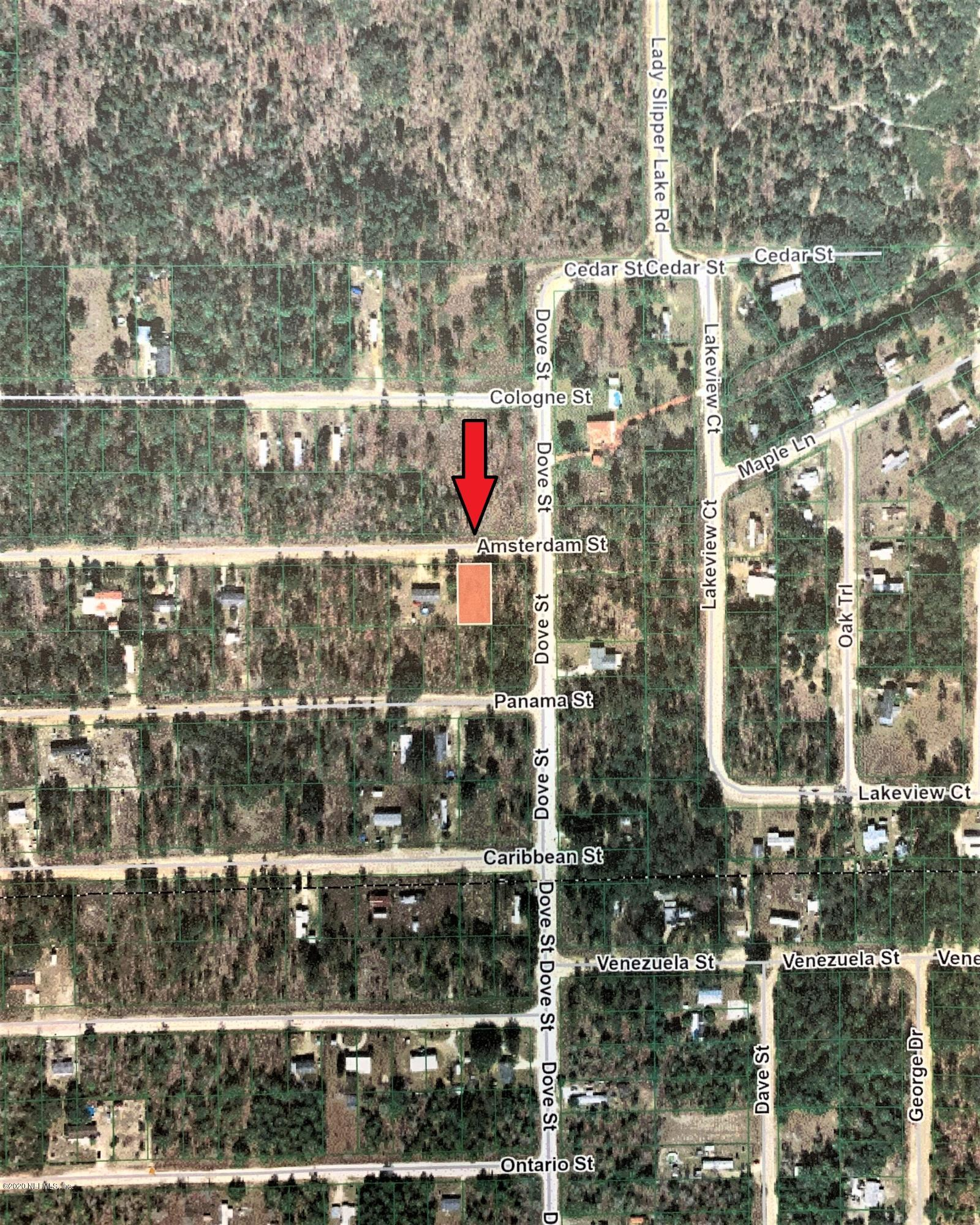 00 AMSTERDAM, INTERLACHEN, FLORIDA 32148, ,Vacant land,For sale,AMSTERDAM,1042218