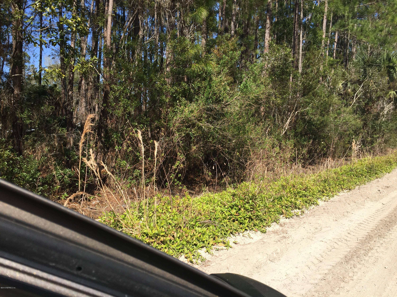 110 DOMINGO, SATSUMA, FLORIDA 32132189, ,Vacant land,For sale,DOMINGO,1042897