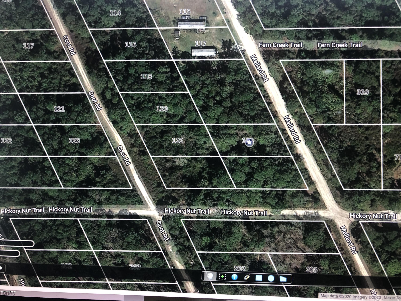 123 MALLARD, SATSUMA, FLORIDA 32189, ,Vacant land,For sale,MALLARD,1042173