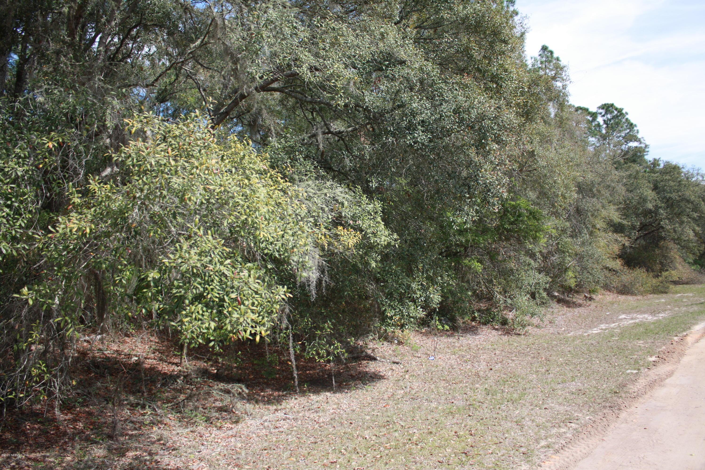7649 GRAND MESA, KEYSTONE HEIGHTS, FLORIDA 32656, ,Vacant land,For sale,GRAND MESA,1044003