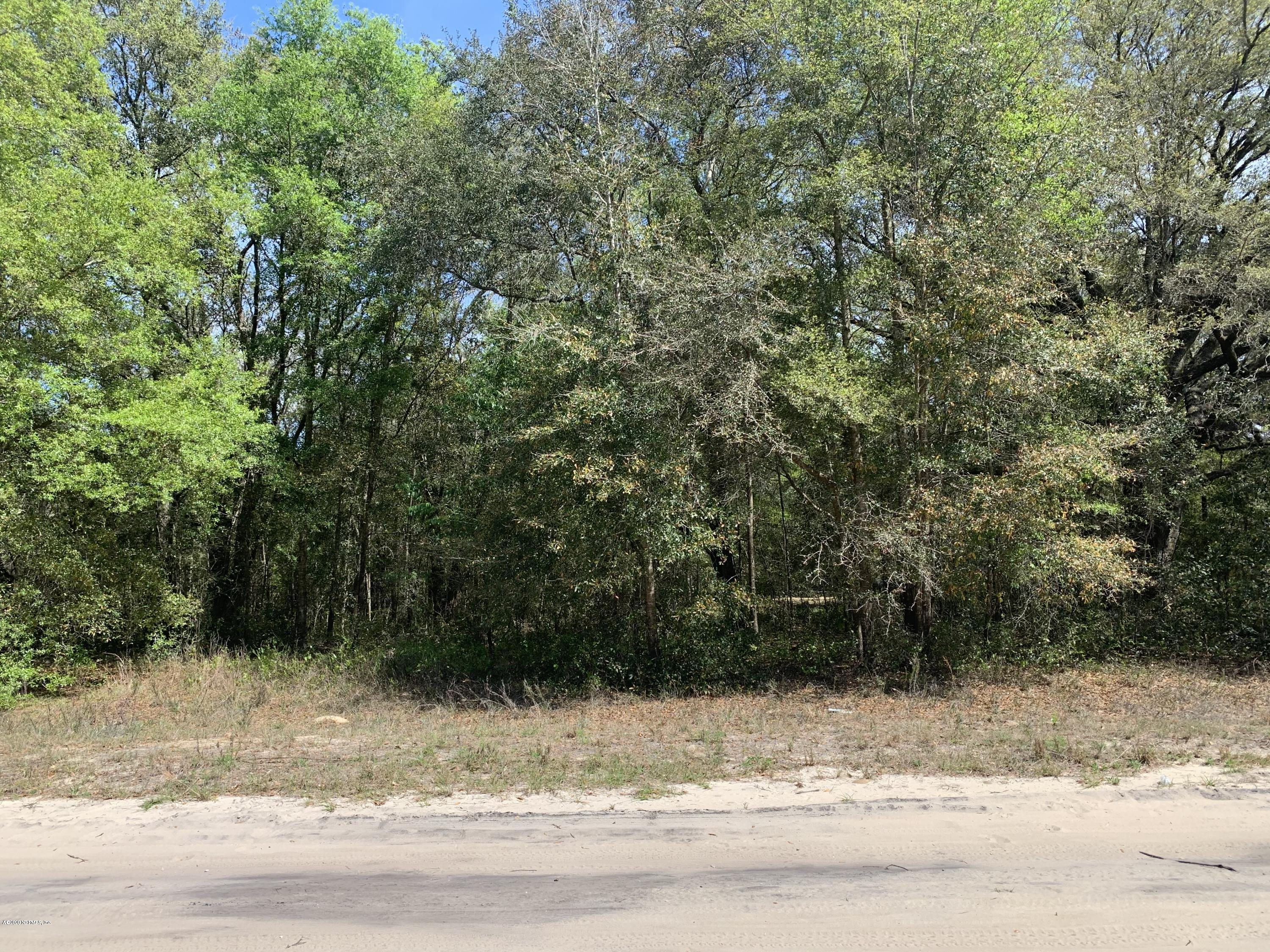 0 MICHAEL, INTERLACHEN, FLORIDA 32148, ,Vacant land,For sale,MICHAEL,970887