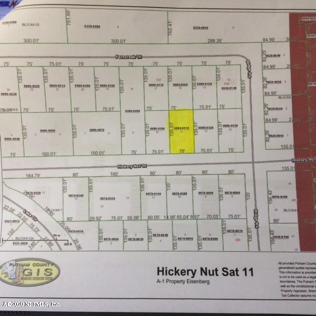 504 HICKORY NUT, SATSUMA, FLORIDA 32189, ,Vacant land,For sale,HICKORY NUT,1044745