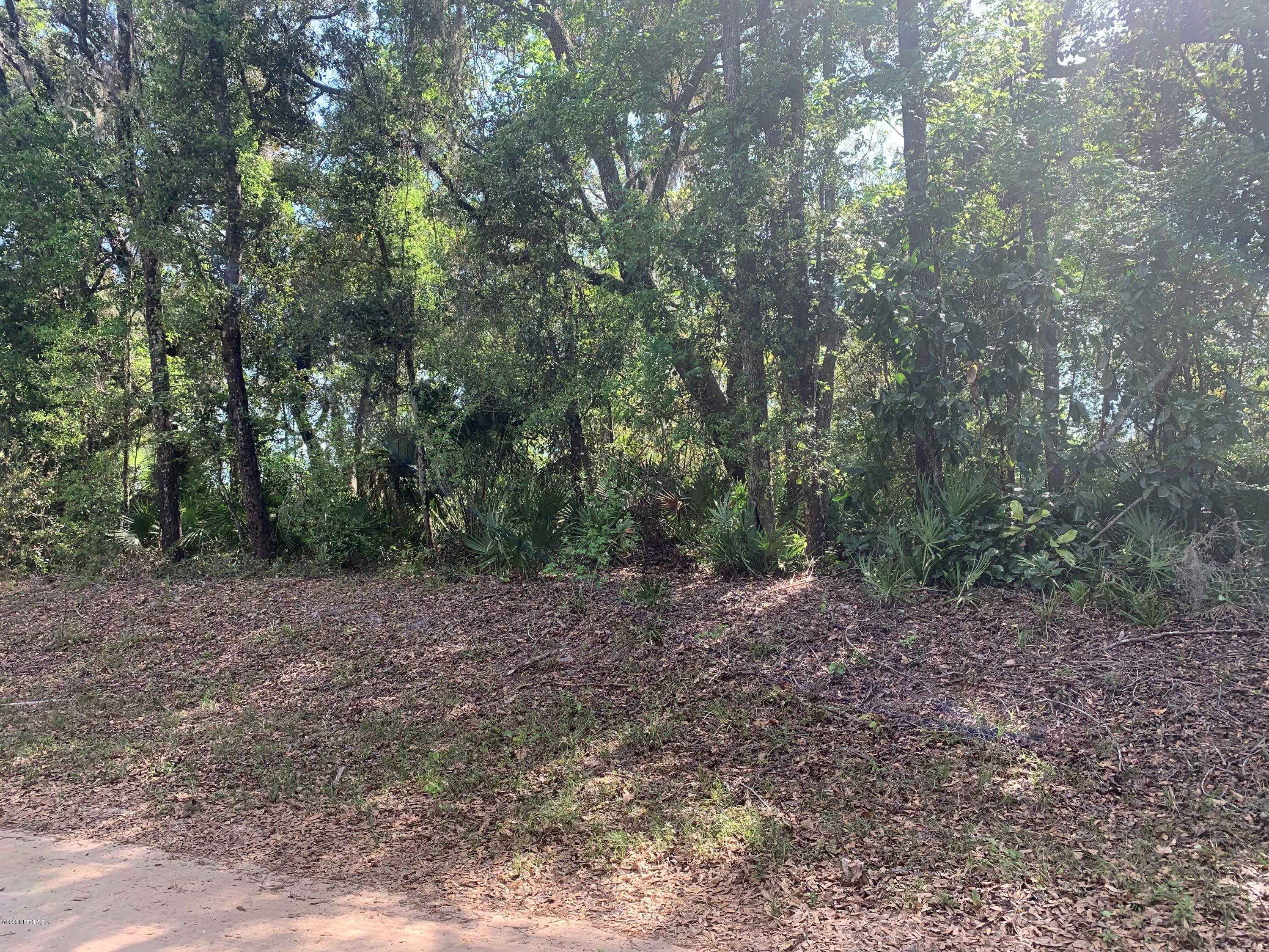 135 FISHERMANS, INTERLACHEN, FLORIDA 32148, ,Vacant land,For sale,FISHERMANS,970684