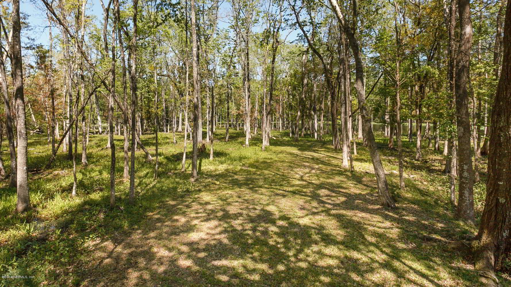 1500 PETERS CREEK LOT #4, GREEN COVE SPRINGS, FLORIDA 32043, ,Vacant land,For sale,PETERS CREEK LOT #4,1046018