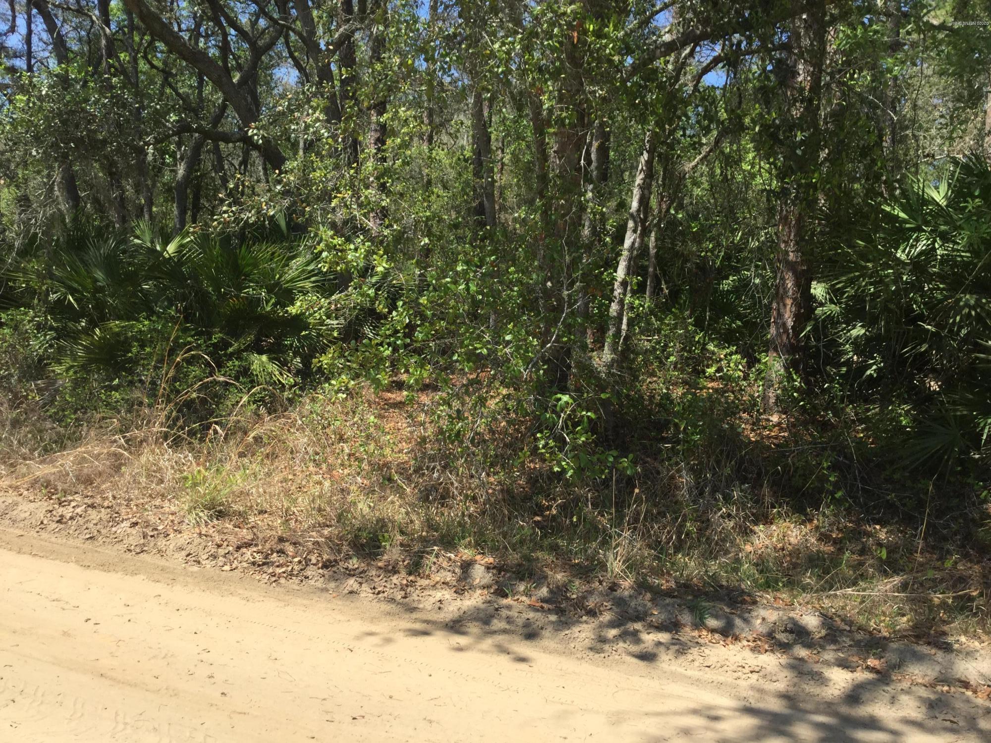 134 CLAY, INTERLACHEN, FLORIDA 32148, ,Vacant land,For sale,CLAY,1046479
