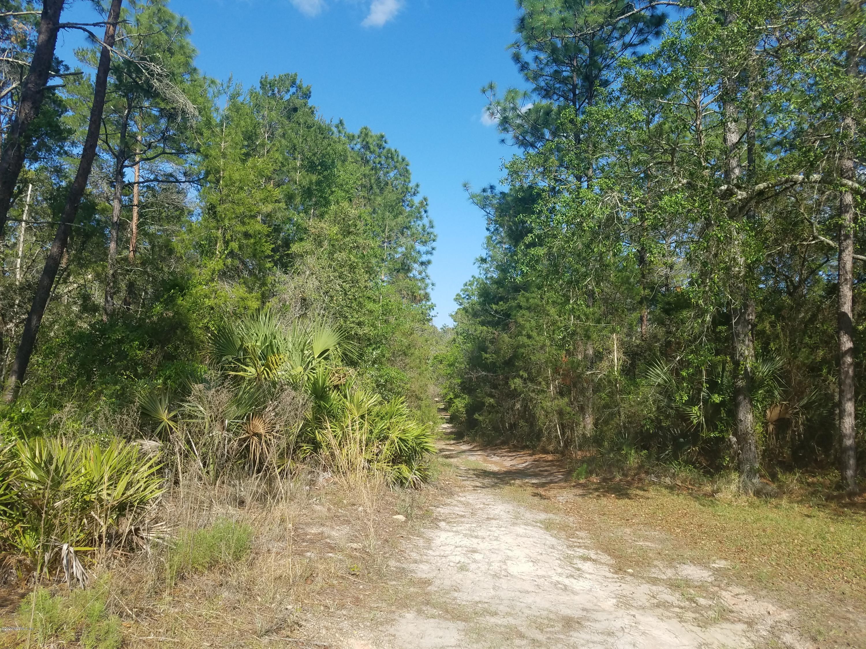 208 IDAHO, SATSUMA, FLORIDA 32189, ,Vacant land,For sale,IDAHO,1048961