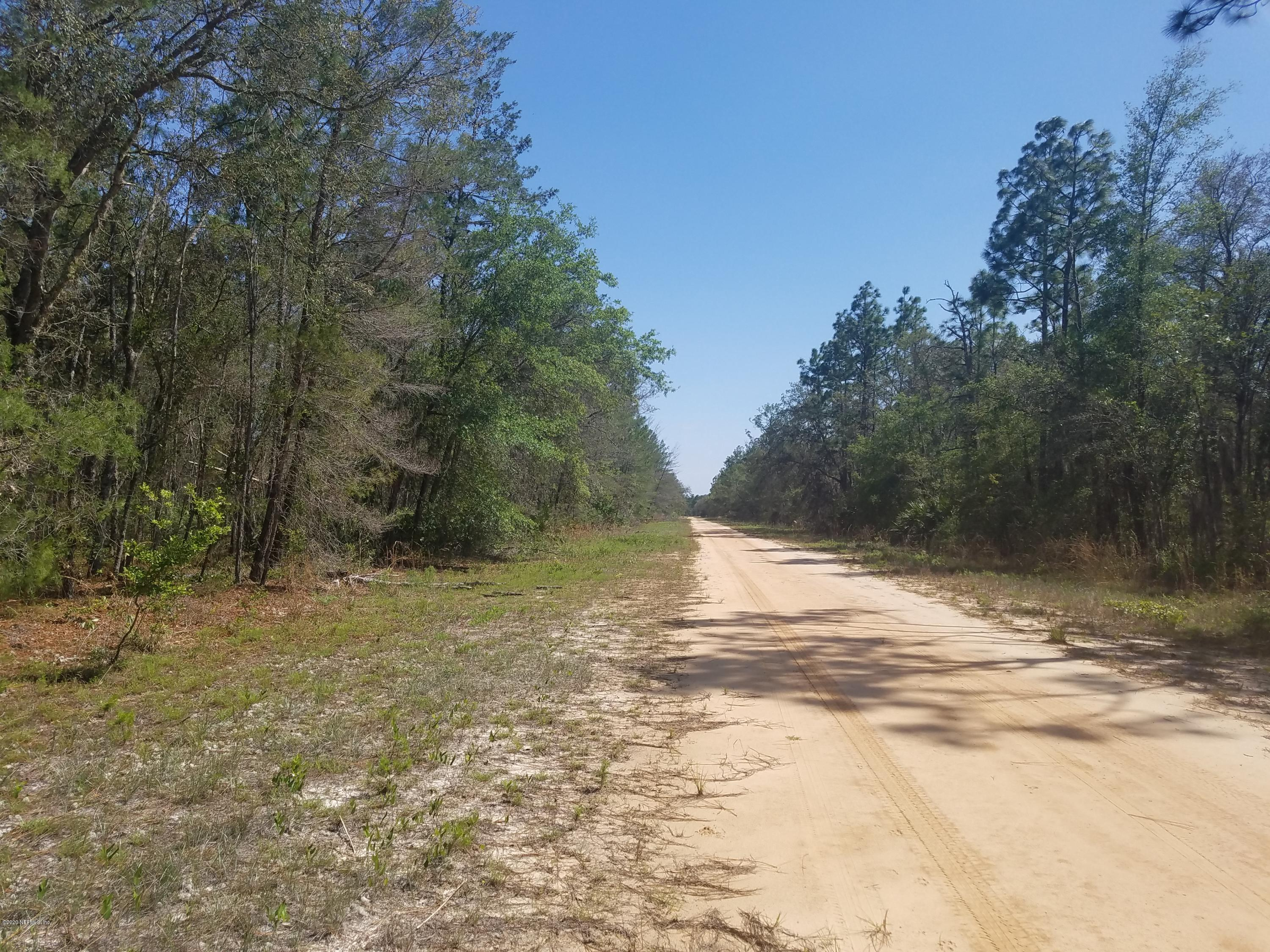 16 NORMAN, INTERLACHEN, FLORIDA 32148, ,Vacant land,For sale,NORMAN,1048965