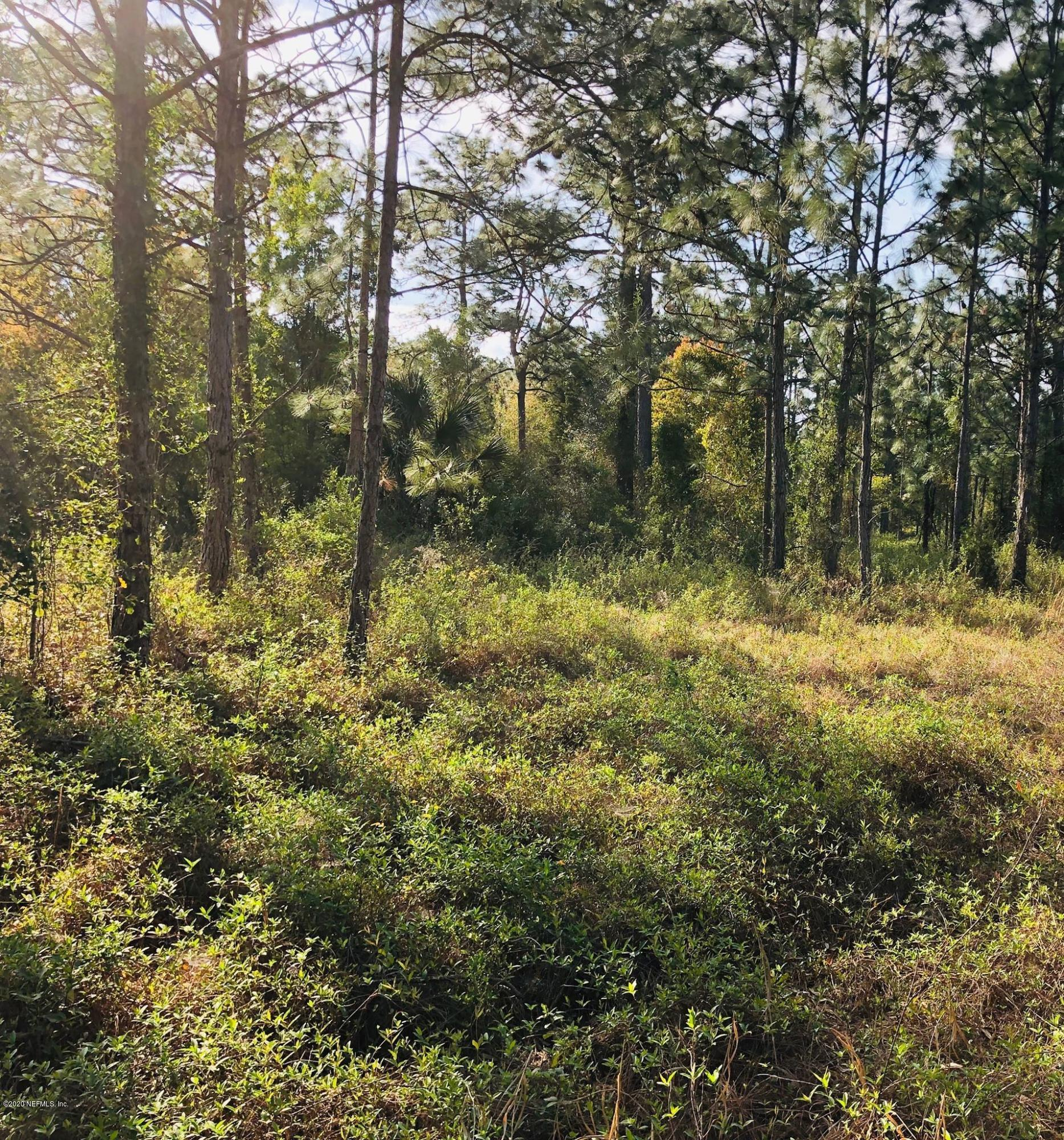 14156 YELLOW BLUFF, JACKSONVILLE, FLORIDA 32226, ,Vacant land,For sale,YELLOW BLUFF,1049244