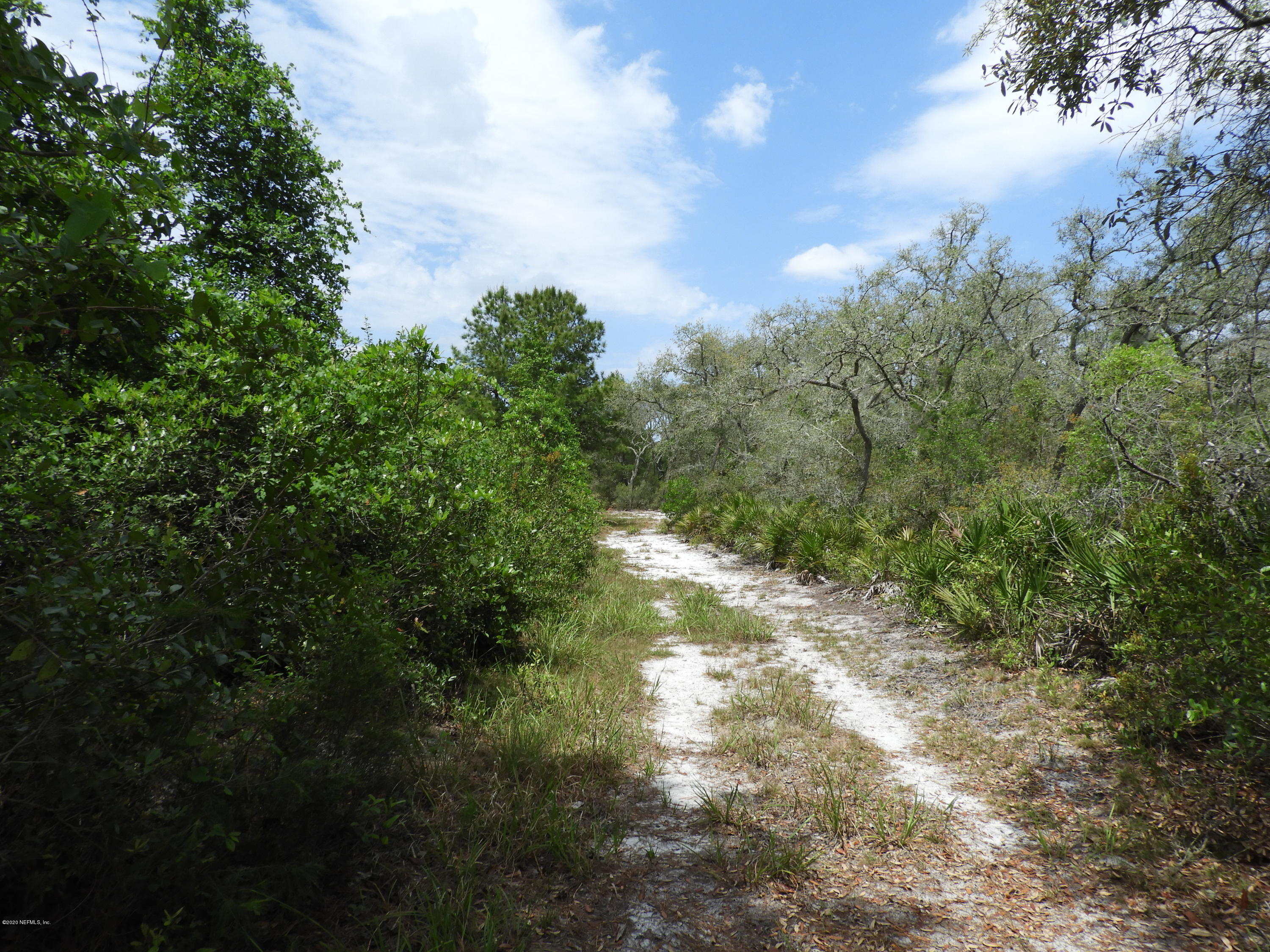 960 COUNTY ROAD 20A, HAWTHORNE, FLORIDA 32640, ,Vacant land,For sale,COUNTY ROAD 20A,1050940