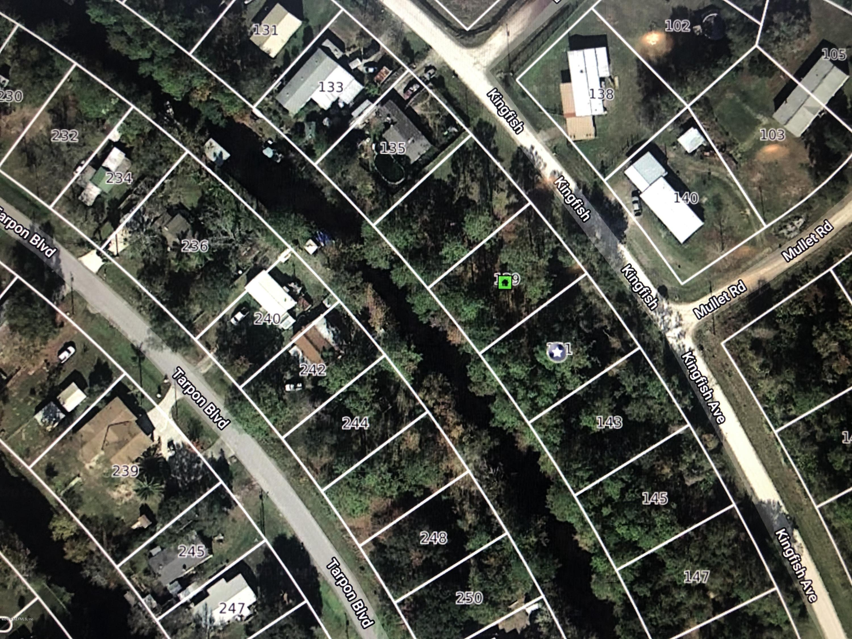 141 KINGFISH, PALATKA, FLORIDA 32177, ,Vacant land,For sale,KINGFISH,1051418