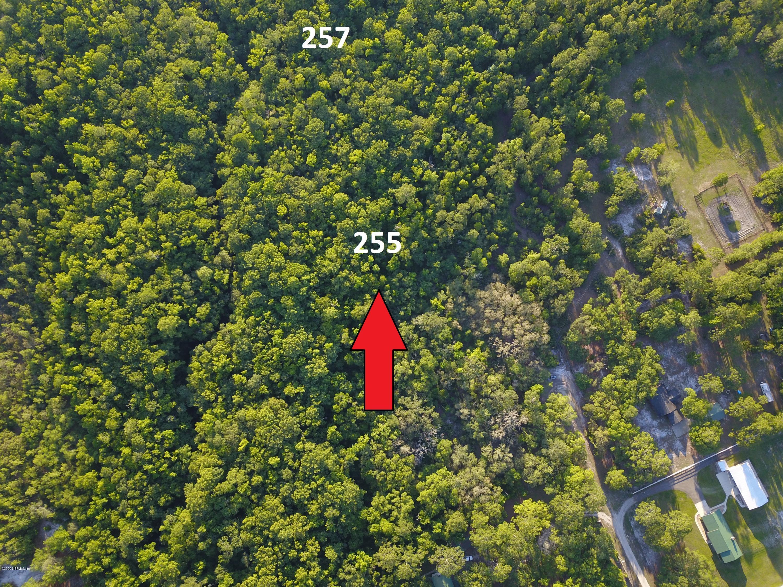 257 PIONEER, PALATKA, FLORIDA 32043, ,Vacant land,For sale,PIONEER,1052124