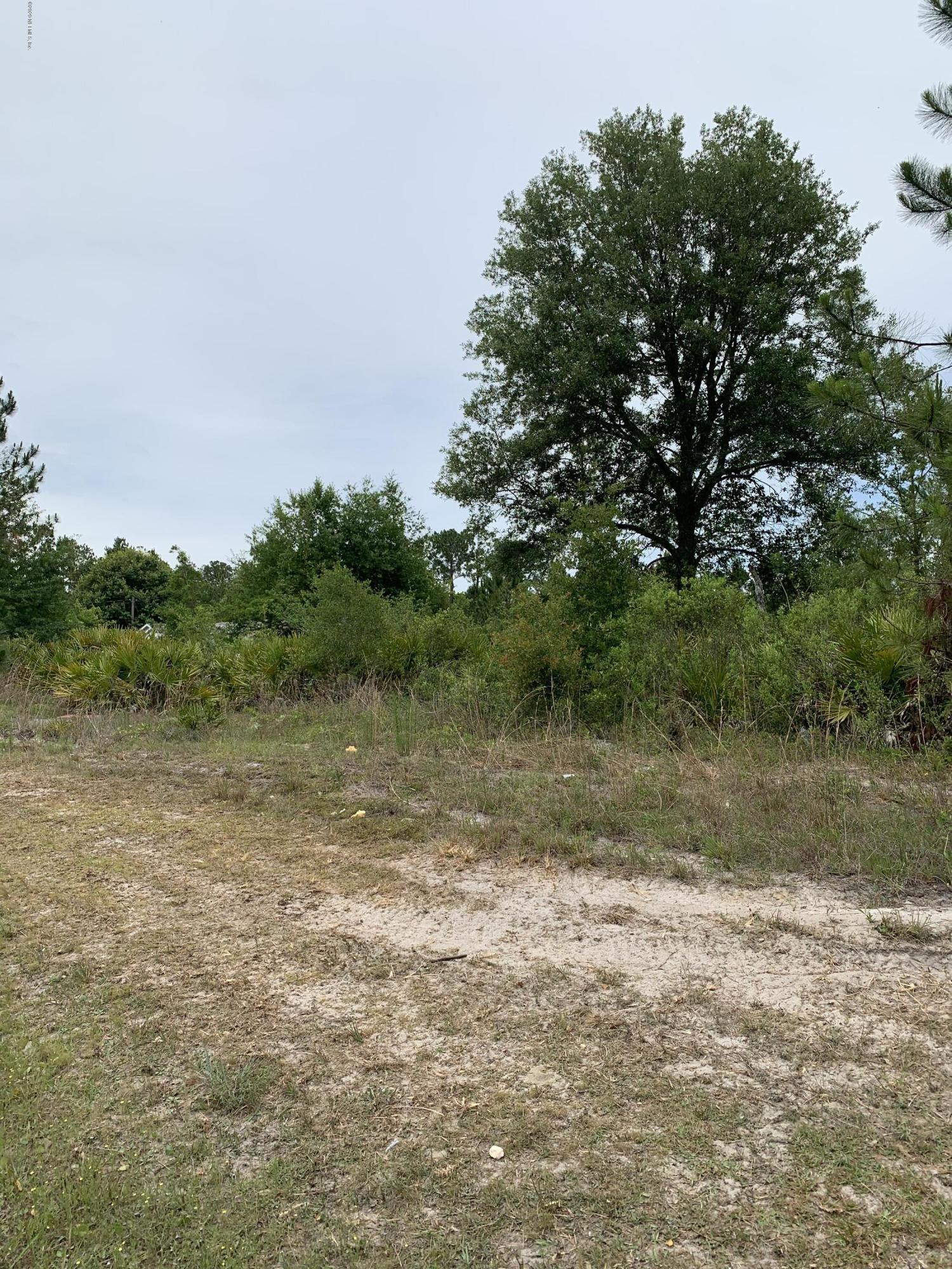 4502 COUNTY RD 218, MIDDLEBURG, FLORIDA 32068, ,Vacant land,For sale,COUNTY RD 218,1054166