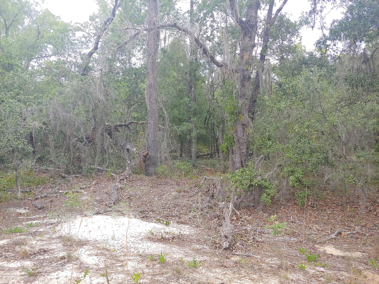 216 PALMER, INTERLACHEN, FLORIDA 32148, ,Vacant land,For sale,PALMER,1054413