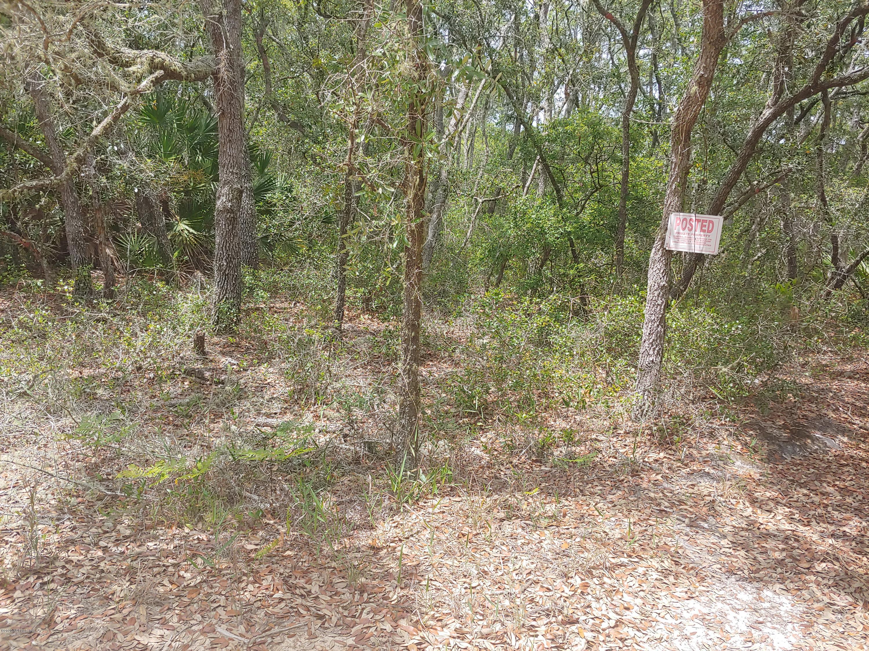 137 DAWSON, INTERLACHEN, FLORIDA 32148, ,Vacant land,For sale,DAWSON,1054419