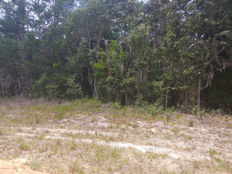 0030 NEILSON, INTERLACHEN, FLORIDA 32148, ,Vacant land,For sale,NEILSON,1054422
