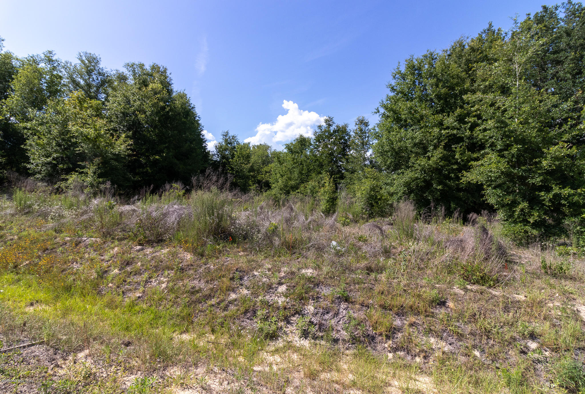 0 ASHLEY LAKE, MELROSE, FLORIDA 32666, ,Vacant land,For sale,ASHLEY LAKE,1055292