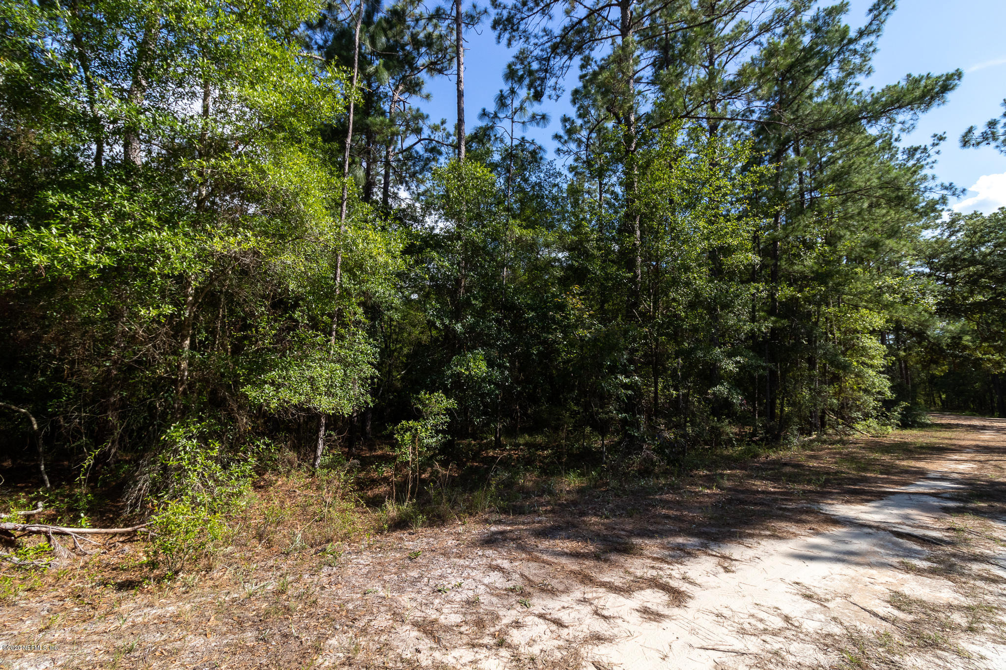0 PINE CONE, MELROSE, FLORIDA 32666, ,Vacant land,For sale,PINE CONE,1055331