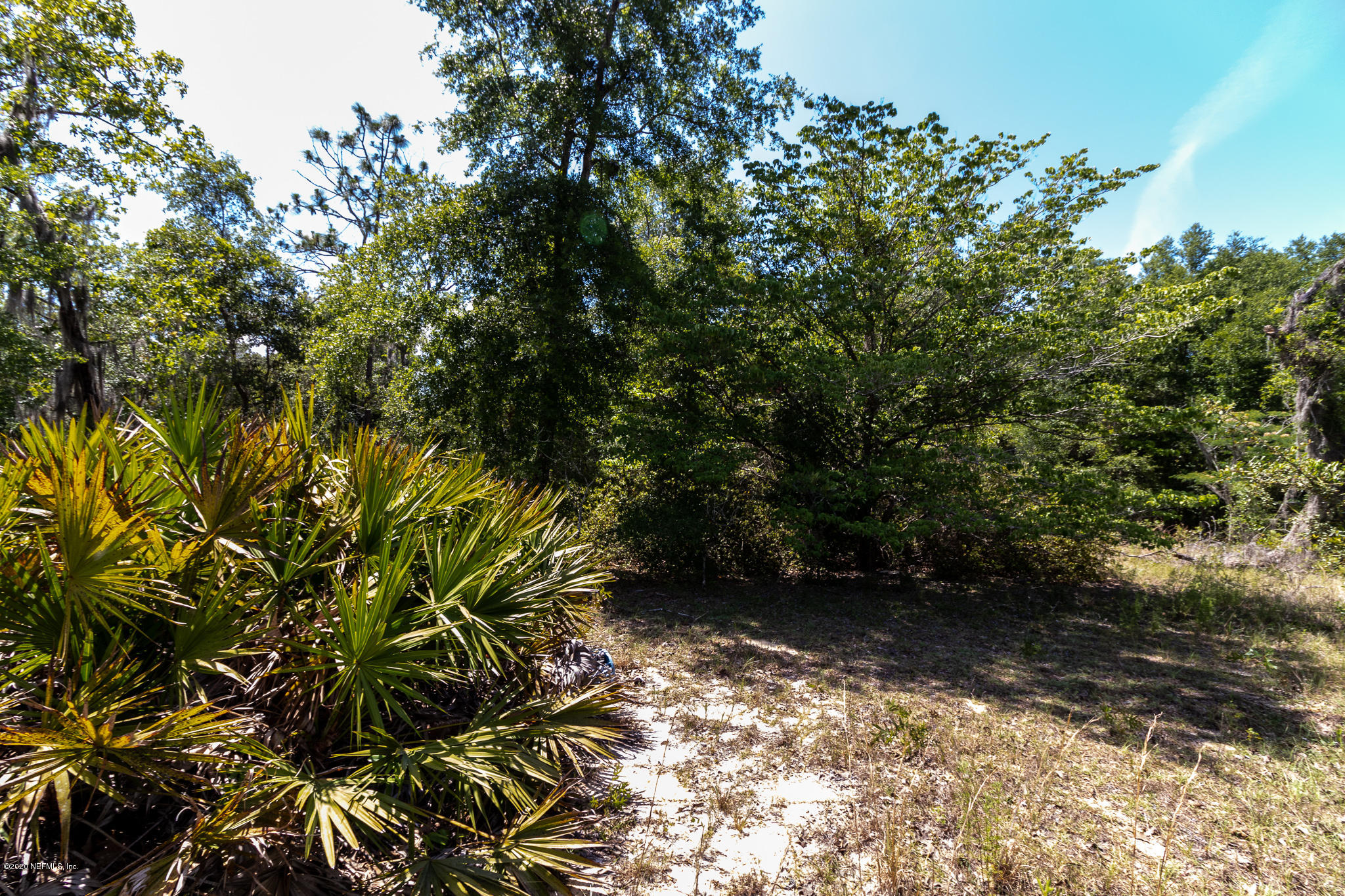 114 COUNTRY LIVING, MELROSE, FLORIDA 32666, ,Vacant land,For sale,COUNTRY LIVING,1055520