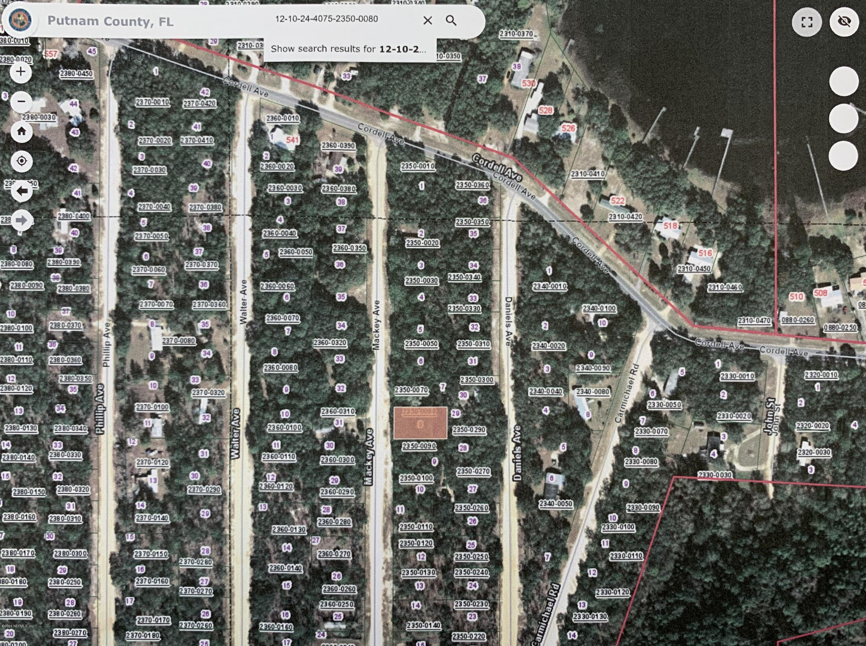 00 MACKEY, INTERLACHEN, FLORIDA 32148, ,Vacant land,For sale,MACKEY,1056177