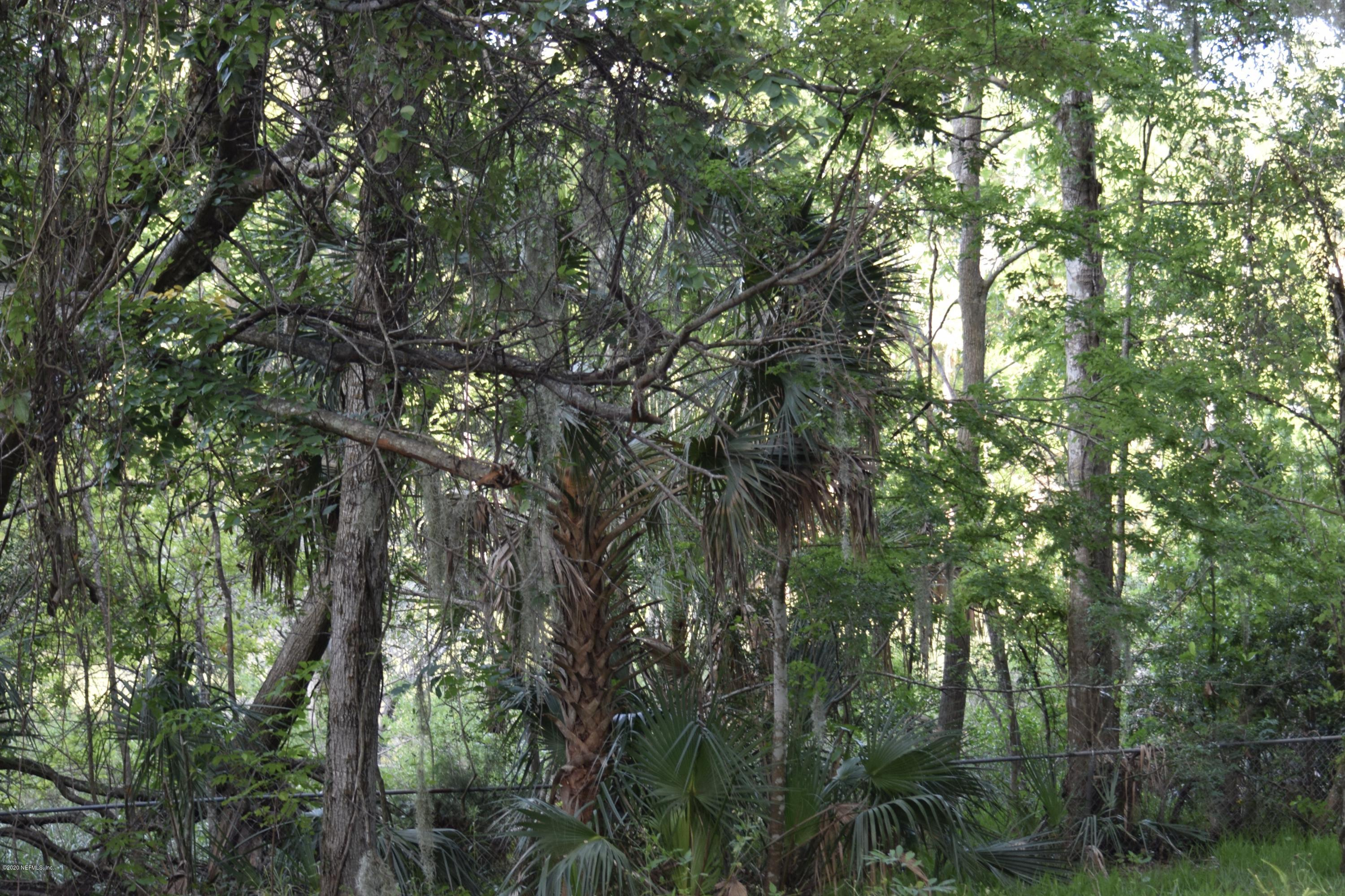 1229 FOREST OAKS, NEPTUNE BEACH, FLORIDA 32266, ,Vacant land,For sale,FOREST OAKS,1056207