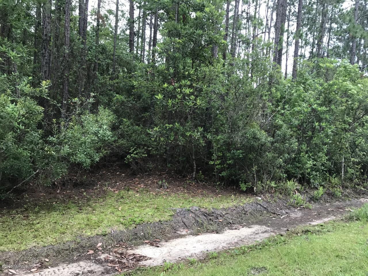 2351 DAISY, MIDDLEBURG, FLORIDA 32068, ,Vacant land,For sale,DAISY,1056680