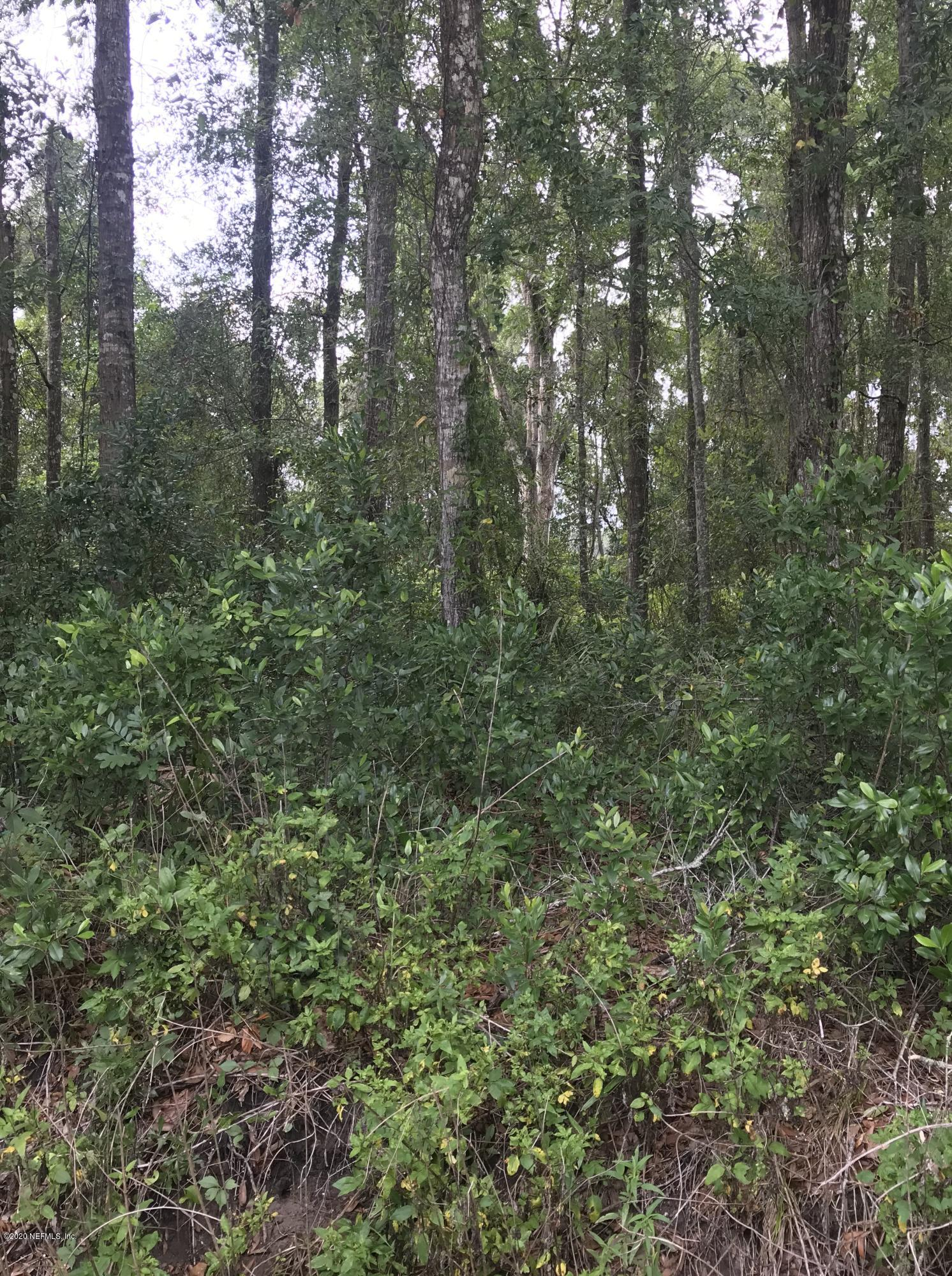 134 GEORGETOWN POINT, GEORGETOWN, FLORIDA 32139, ,Vacant land,For sale,GEORGETOWN POINT,1057021
