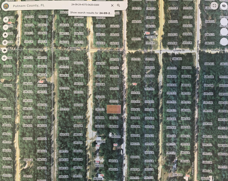 000 NORMAN, INTERLACHEN, FLORIDA 32148, ,Vacant land,For sale,NORMAN,1057996