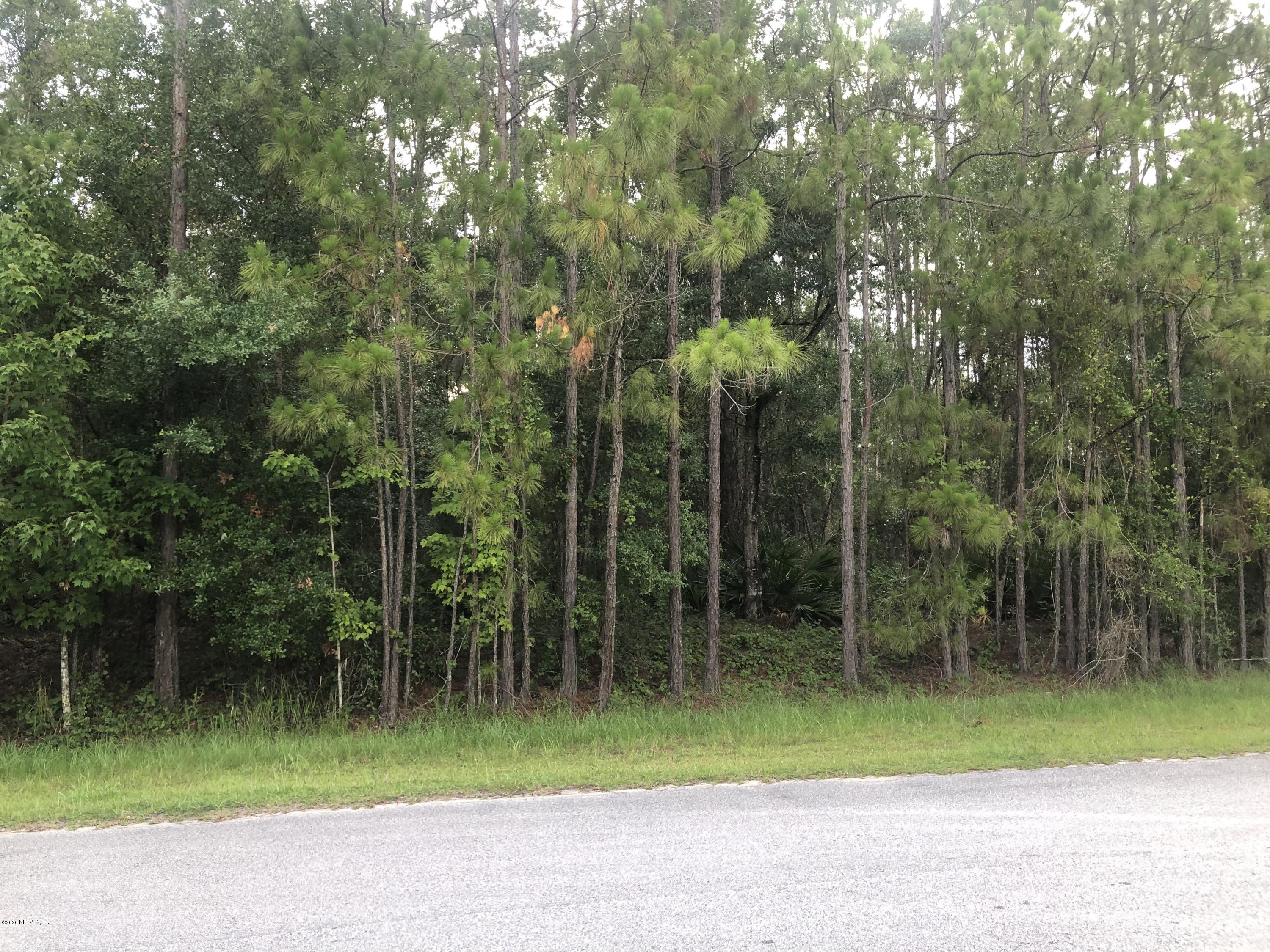 177 WHISPERING PINES, GEORGETOWN, FLORIDA 32139, ,Vacant land,For sale,WHISPERING PINES,1059111