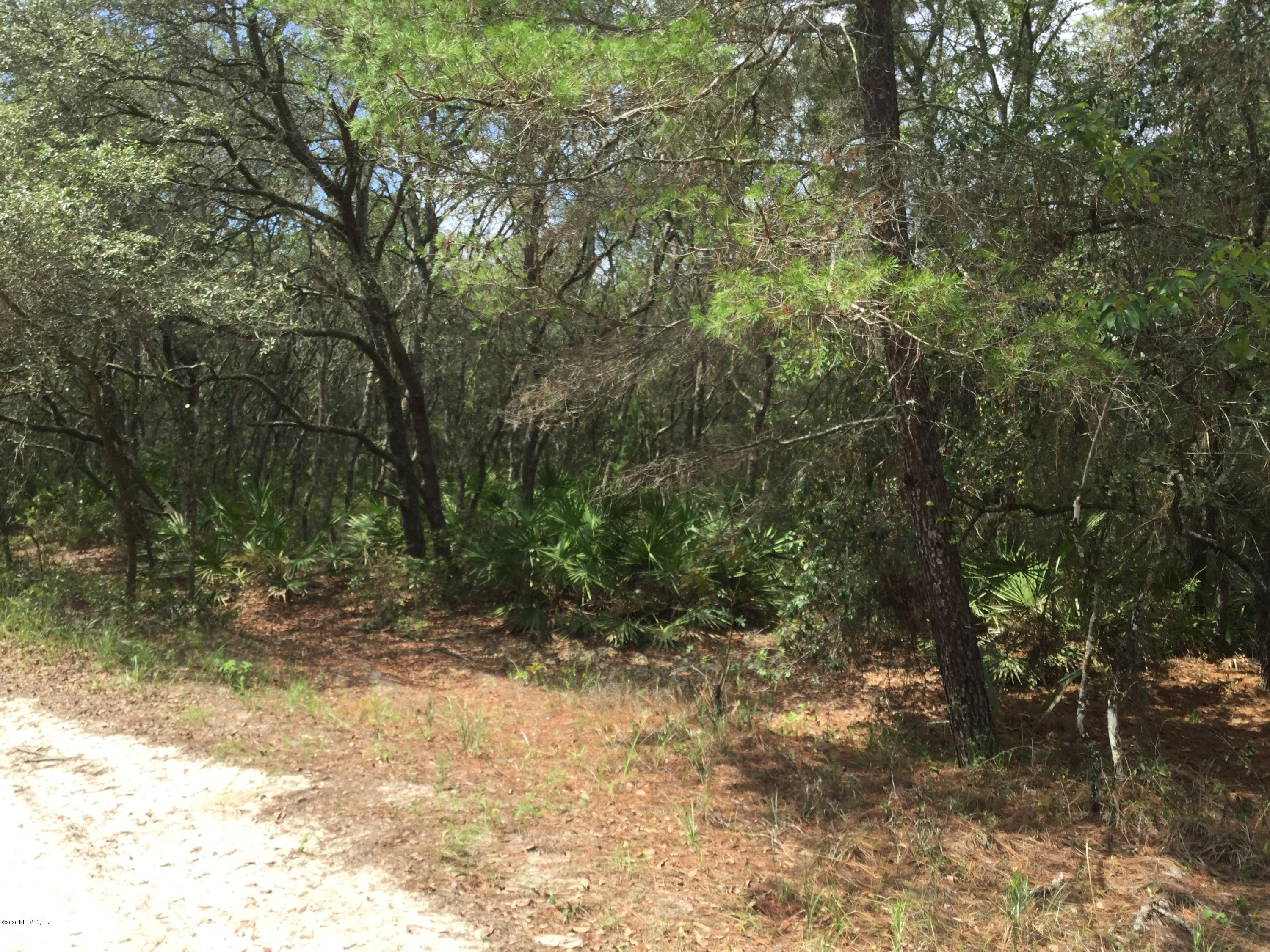 105 NEVADA, SATSUMA, FLORIDA 32189, ,Vacant land,For sale,NEVADA,1059064