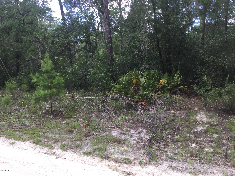 120 PALMETTO, POMONA PARK, FLORIDA 32181, ,Vacant land,For sale,PALMETTO,1059353